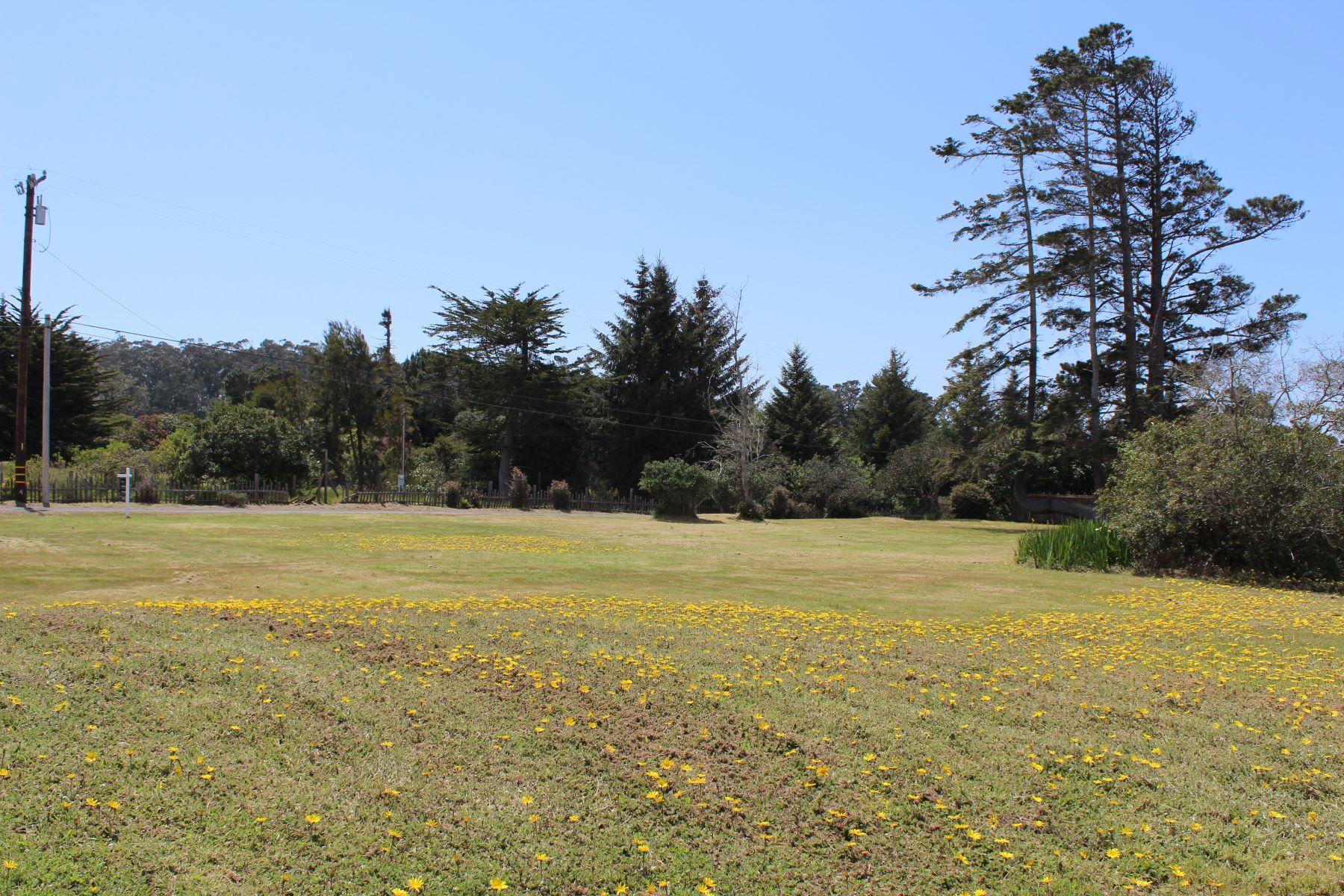 Terreno por un Venta en Coastal Gem 18312 N. Highway One Fort Bragg, California 95437 Estados Unidos