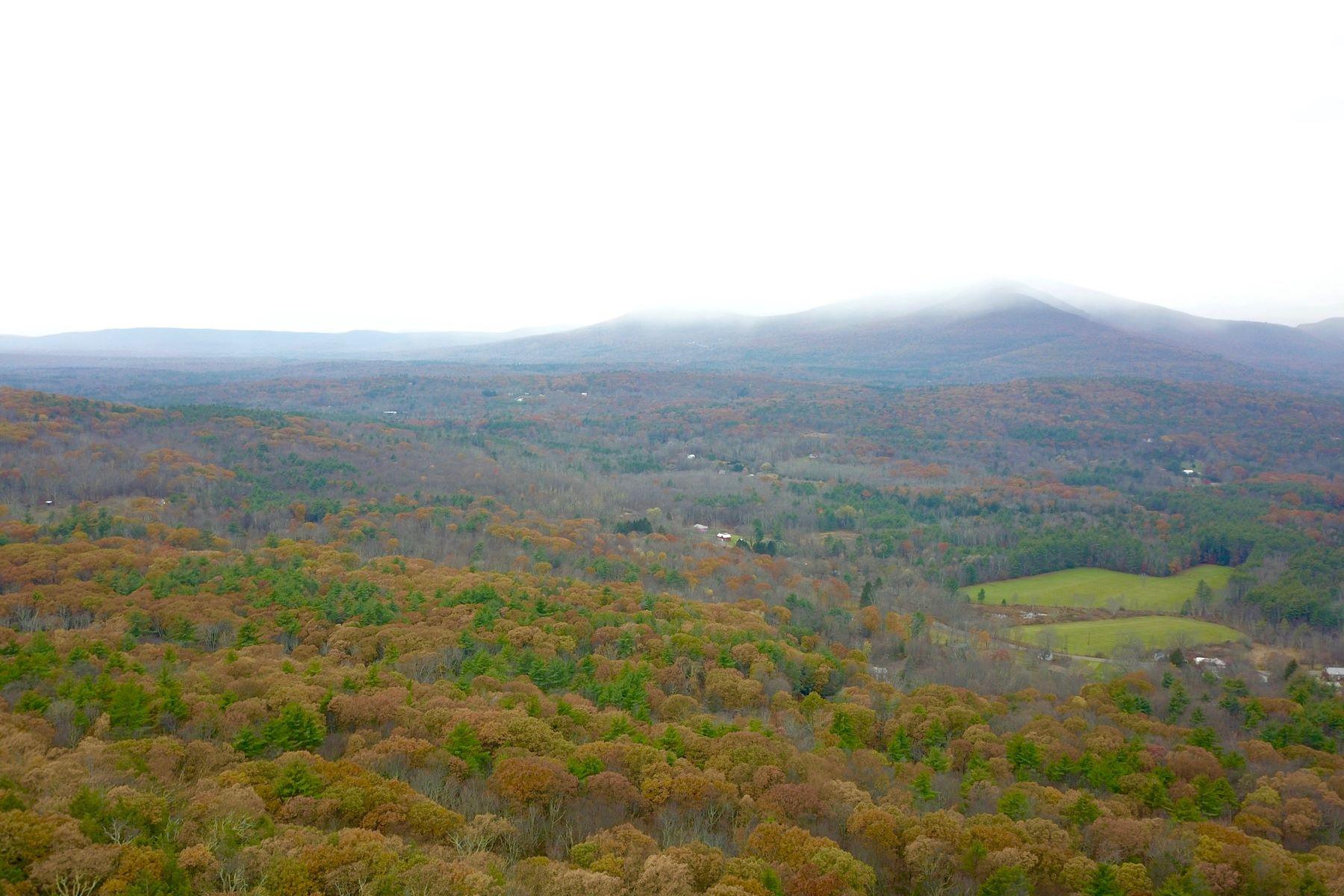 Additional photo for property listing at Kickout Ridge Krumville Road Olivebridge, New York 12461 United States