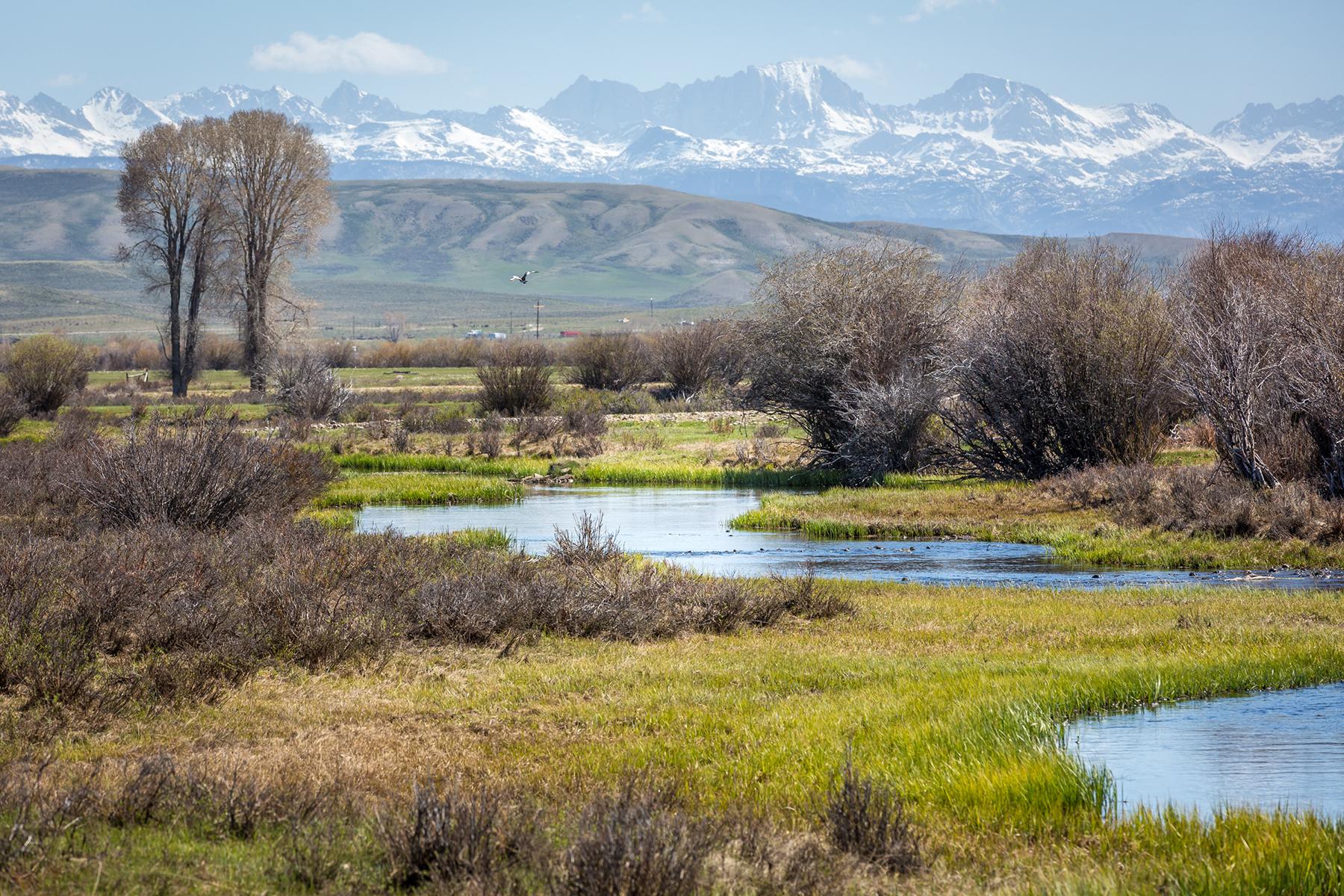 Granjas / Hacienda / Platanción por un Venta en 12981 US Highway 189 Daniel, Wyoming 83115 Estados Unidos
