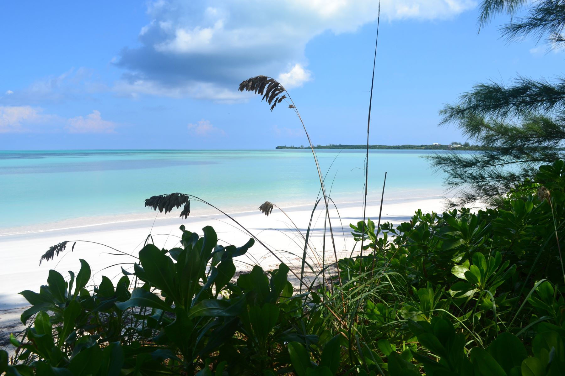 Additional photo for property listing at Lila Bay's Cottage Spanish Wells, Eleuthera Bahamas