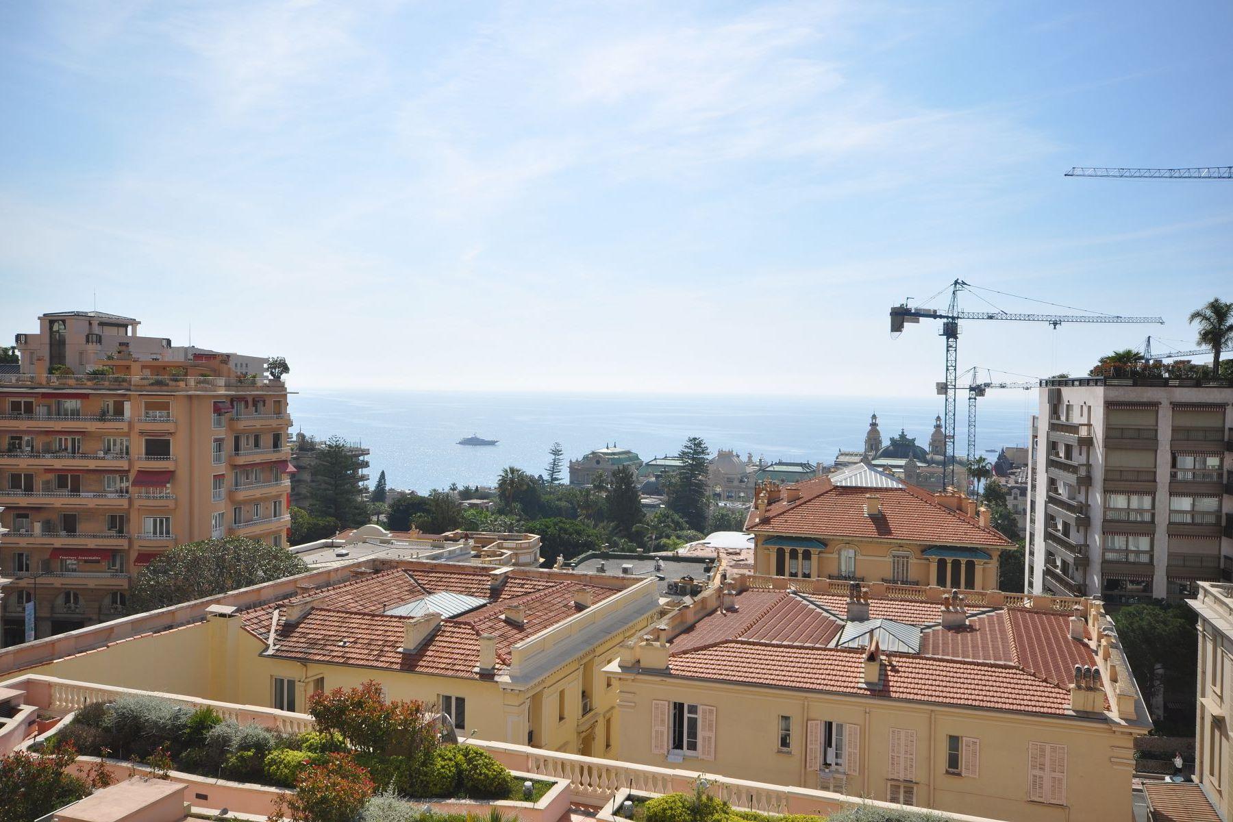 판매용 매물 Other Monaco
