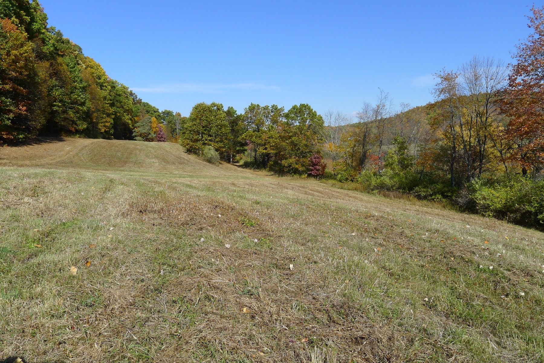 Additional photo for property listing at Streamside 279 Valley Farm Road Millbrook, New York 12545 United States