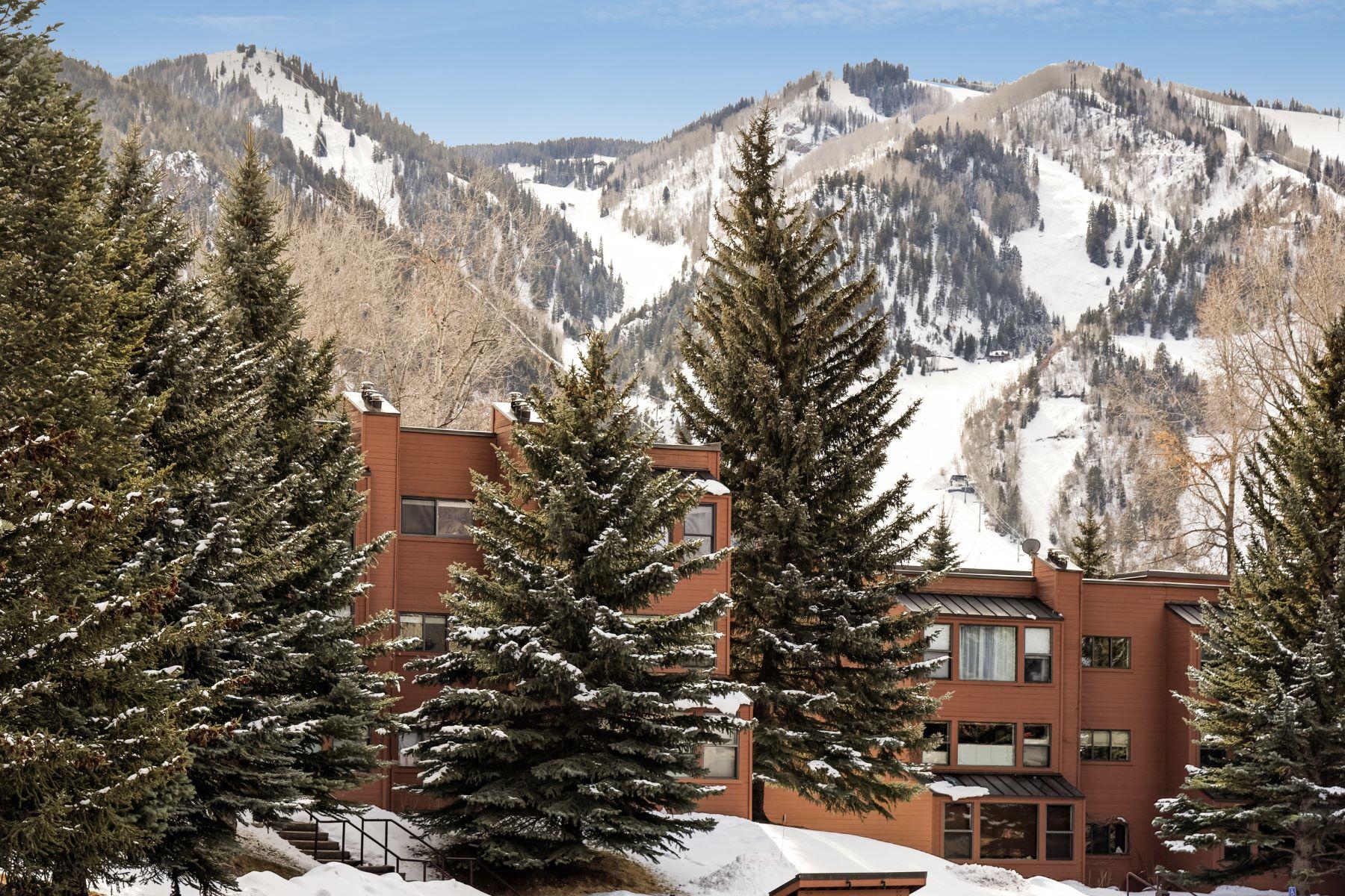Кондоминиум для того Продажа на Top Floor Remodeled One Bedroom Condo 1041 Vine Street Unit 1041, Aspen, Колорадо, 81611 Соединенные Штаты