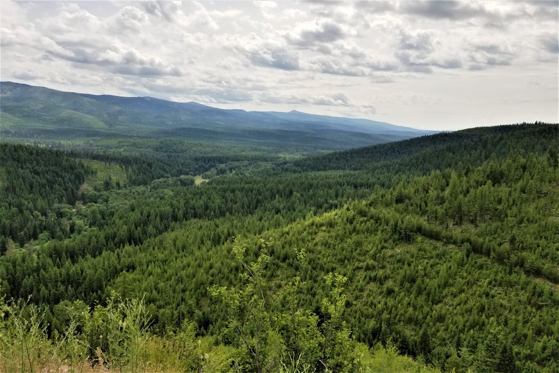 Terreno per Vendita alle ore Huson, Montana 59846 Stati Uniti