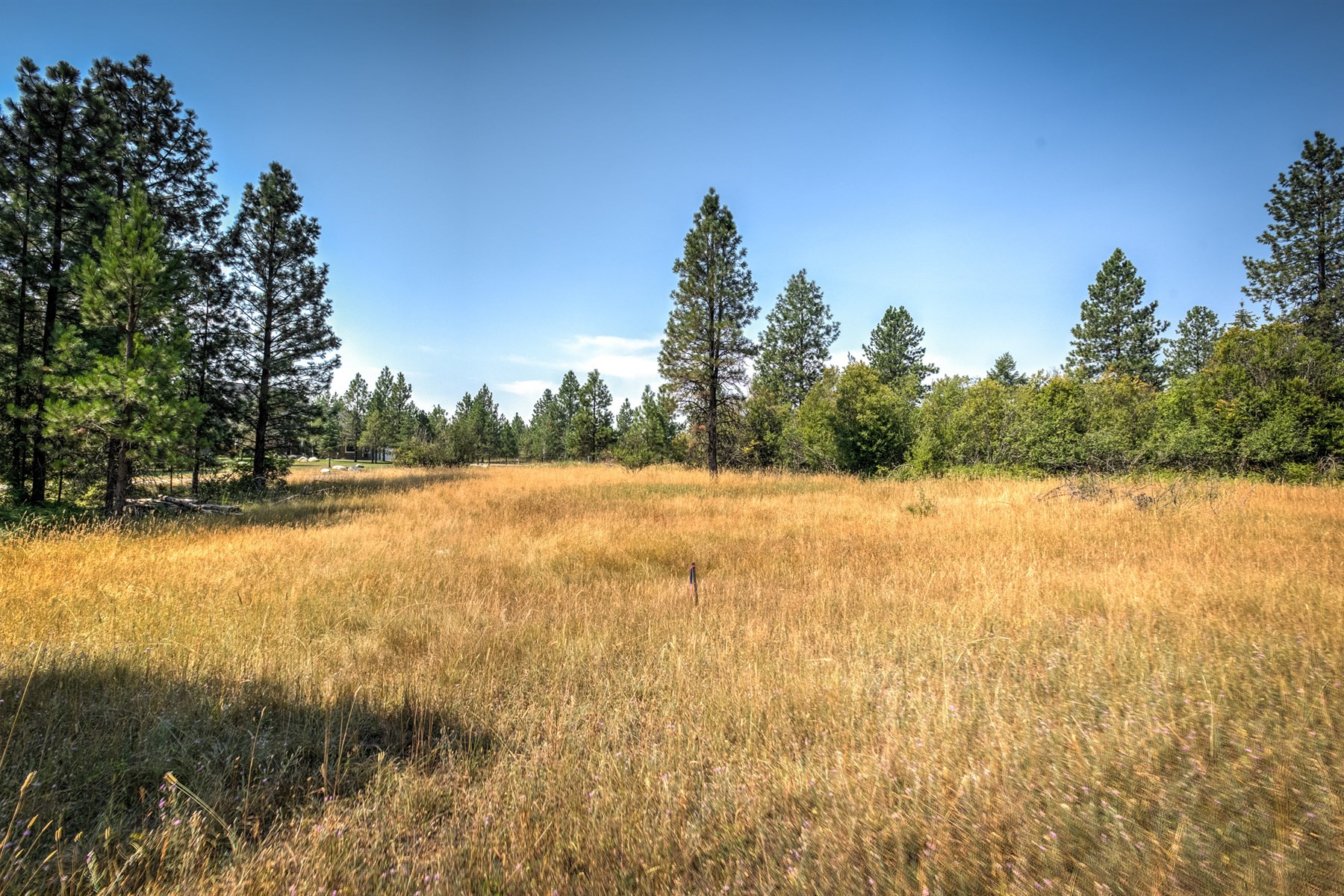 Land for Sale at Orchards Custom Homesite 3 McIntosh Rd Hayden, Idaho 83835 United States