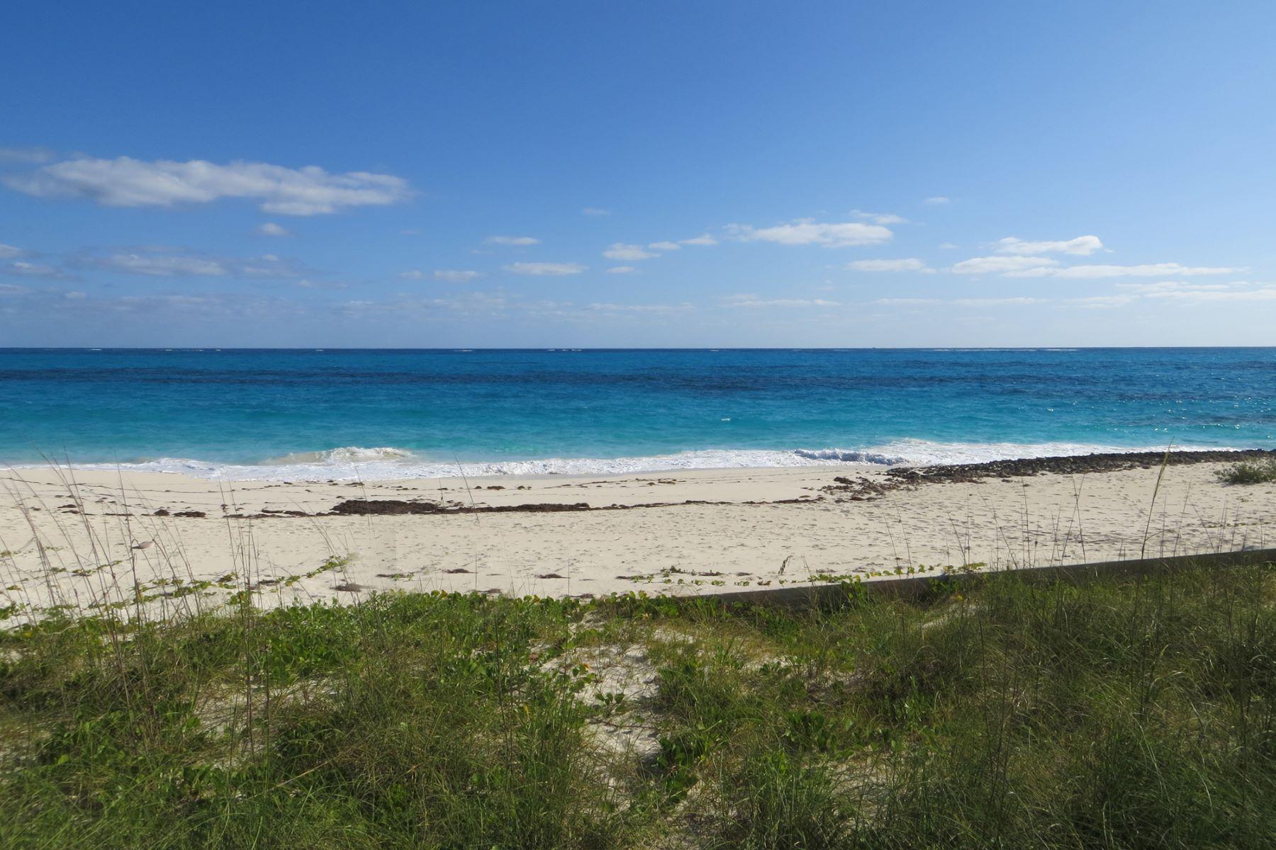 Additional photo for property listing at Man-O-War Lot Man-O-War Cay, 阿巴科 巴哈马