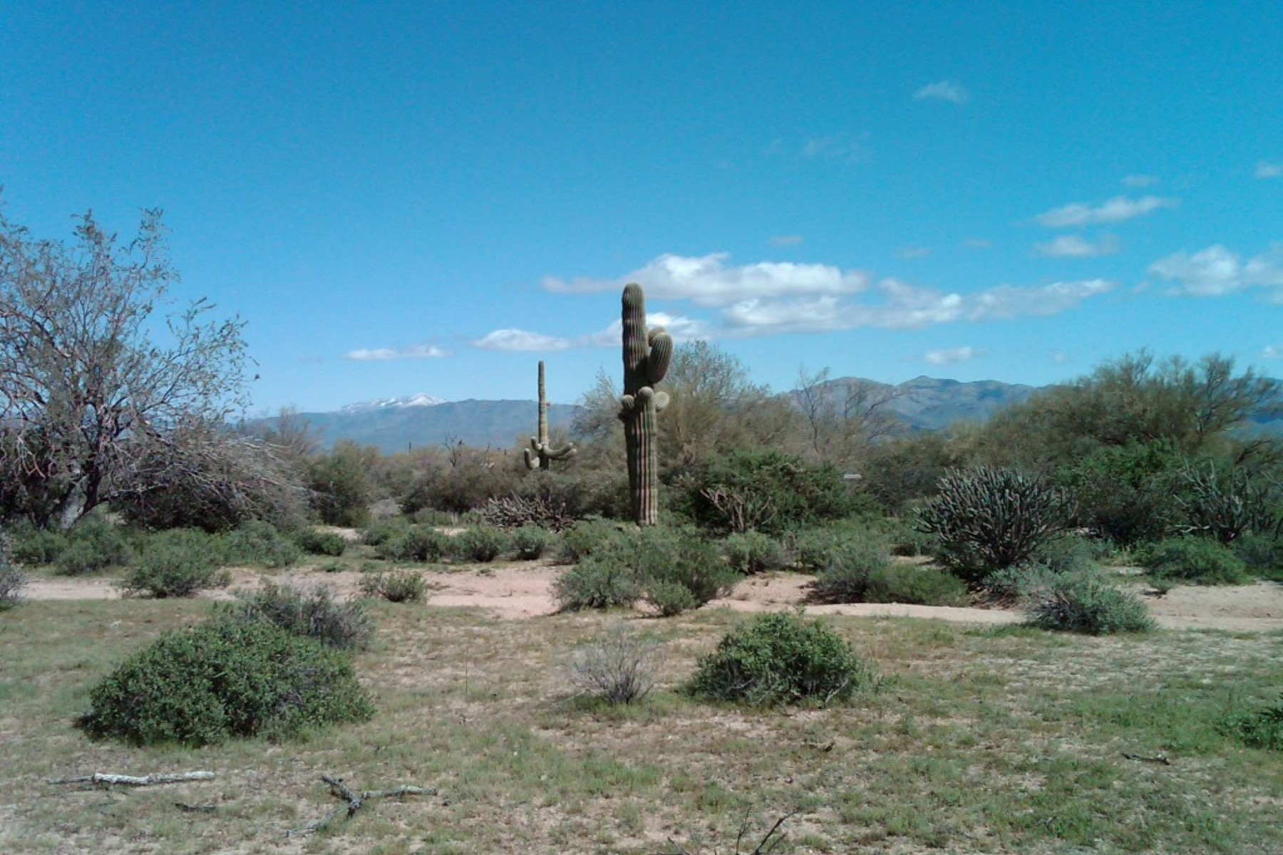 Land for Sale at Very tranquil almost 2.5 Acre lot 32XXX N 162ND ST, Scottsdale, Arizona, 85262 United States