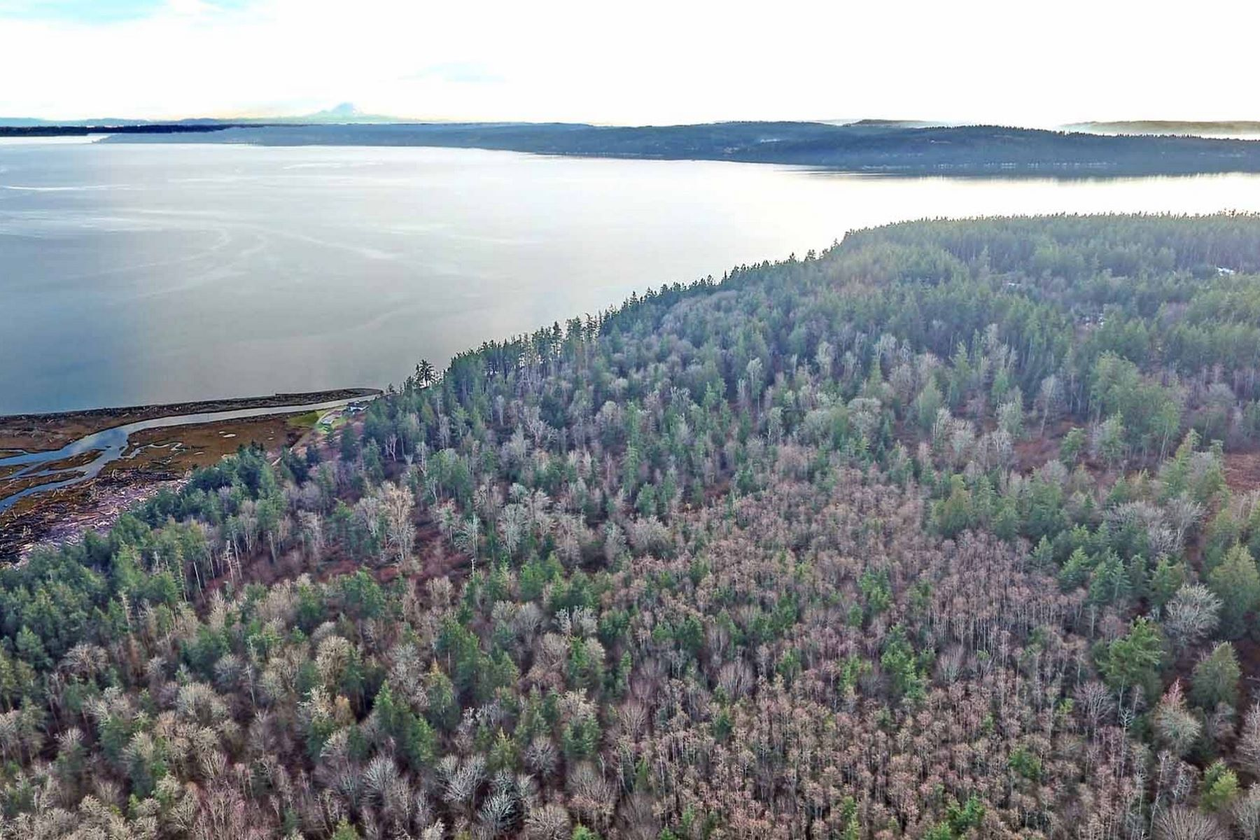 Land for Sale at Xxx Shervin Rd., Camano Island Xxx Shervin Rd Camano Island, Washington 98282 United States