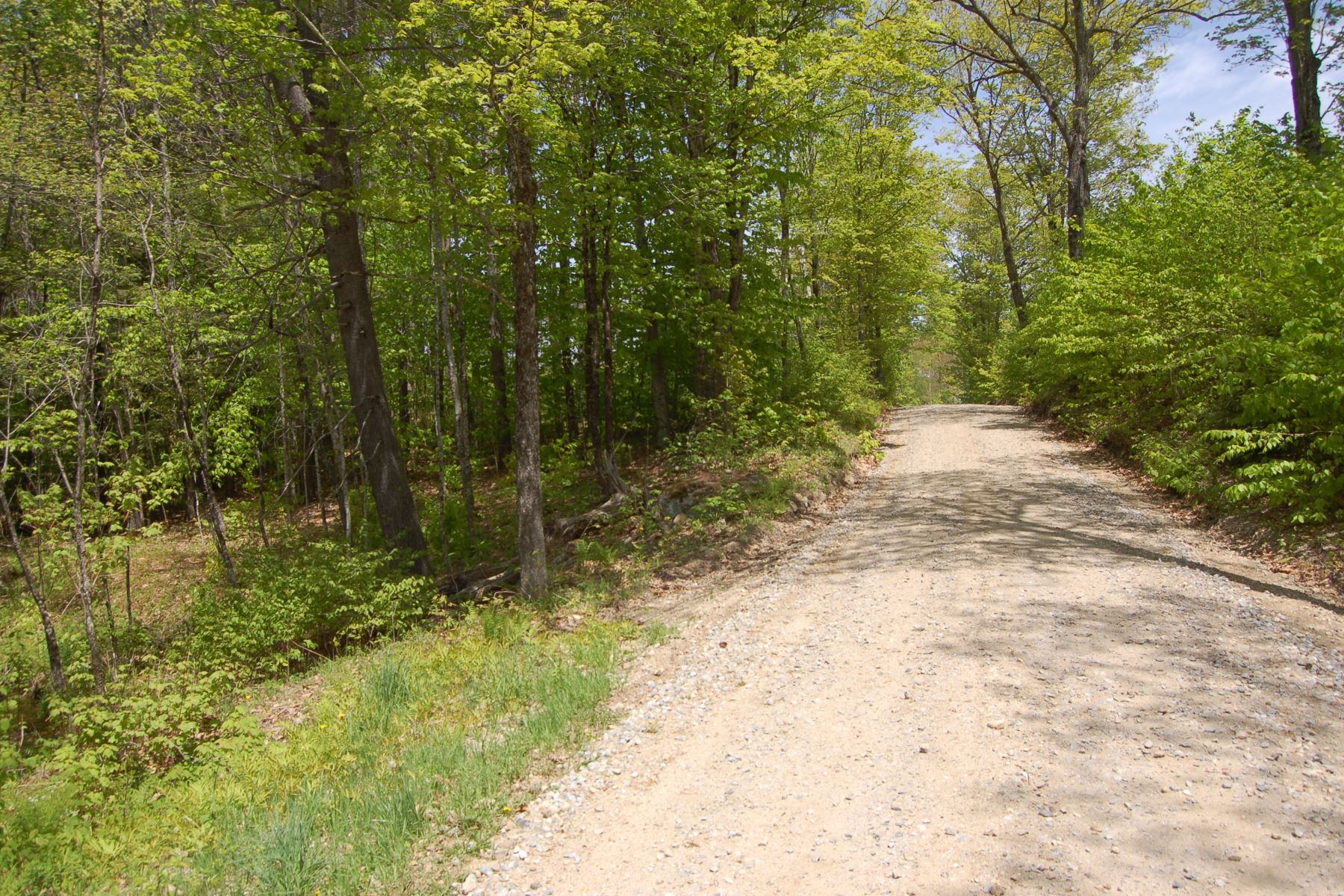 Land for Sale at 11.5 Acre Wooded Lot in Wilmot NH North Wilmot & Richards Rd Wilmot, New Hampshire 03287 United States