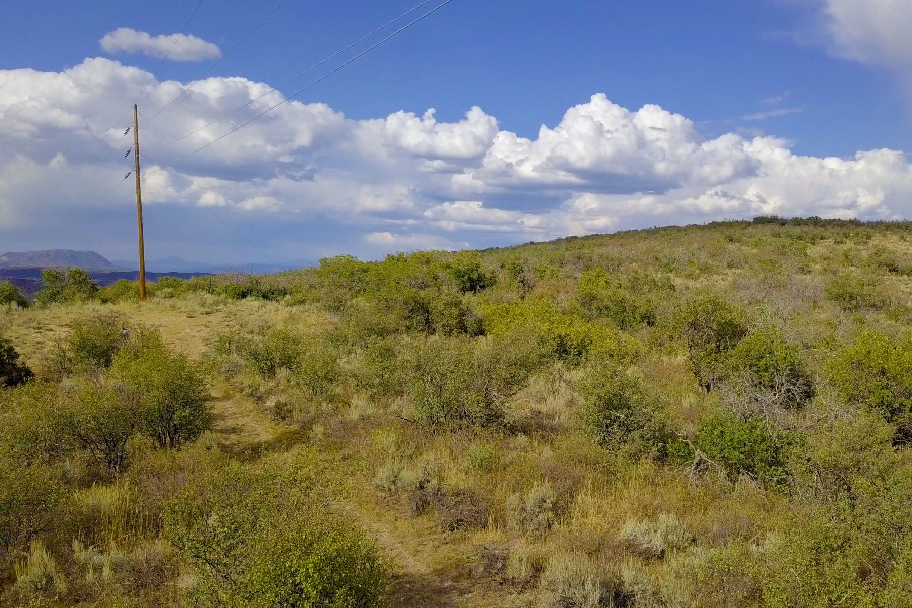 Additional photo for property listing at Great Building Site at an Affordable Price TBD County Road 179 Lot 24 Steamboat Springs, Colorado 80487 United States