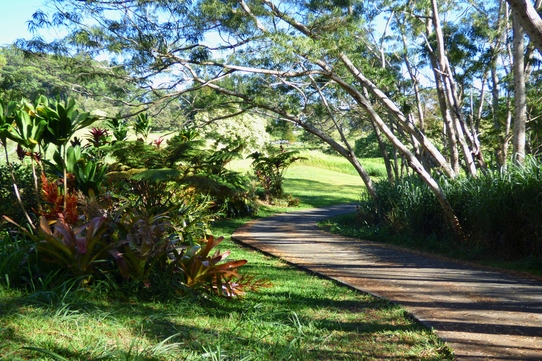 Land for Active at Private Estate Land 43-1972 Paauilo Mauka Rd Paauilo, Hawaii 96727 United States