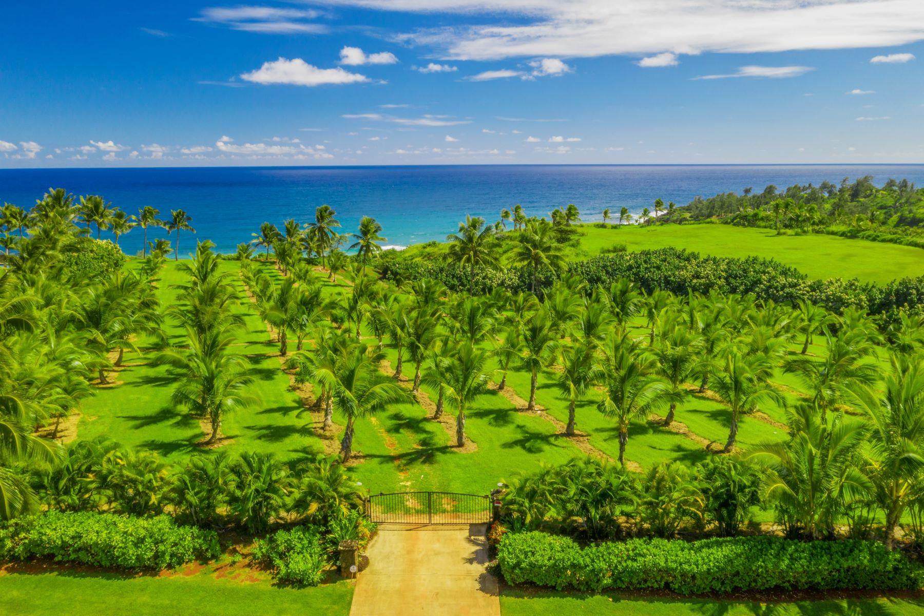 Terreno per Vendita alle ore Kealia, Hawaii 96746 Stati Uniti