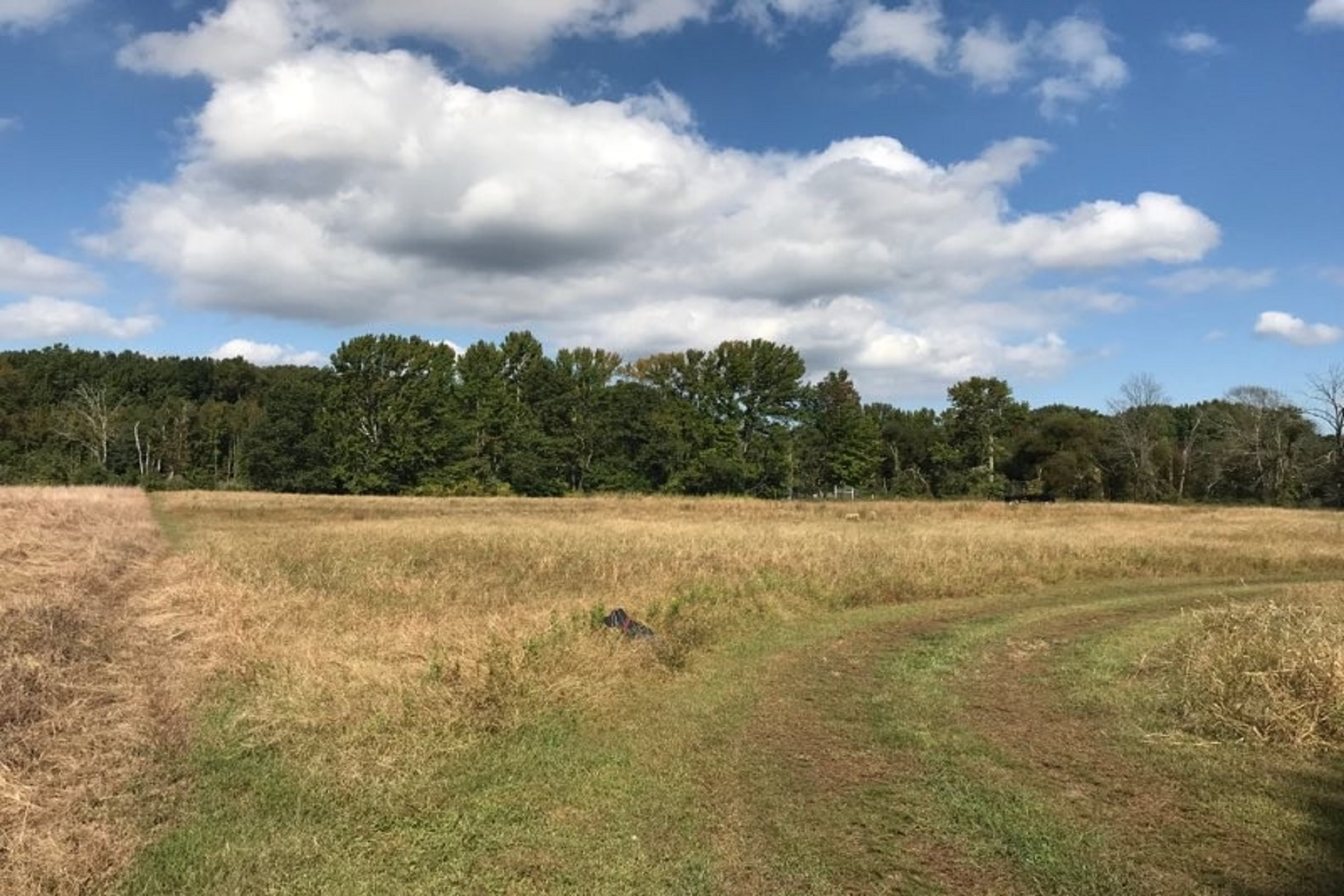 Land for Sale at 69 Station Road Morganville, New Jersey 07751 United States