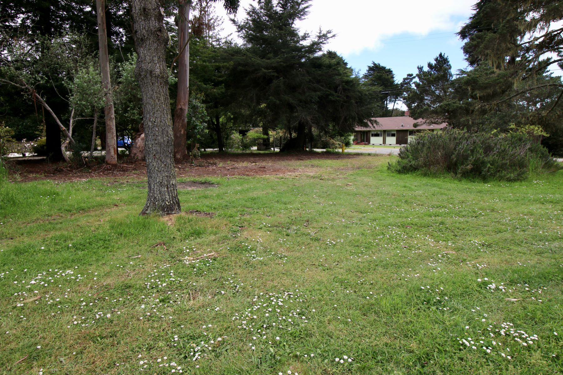 Property for Sale at Develop Your Dream Home 20 Swing Tree Lane Fort Bragg, California 95437 United States