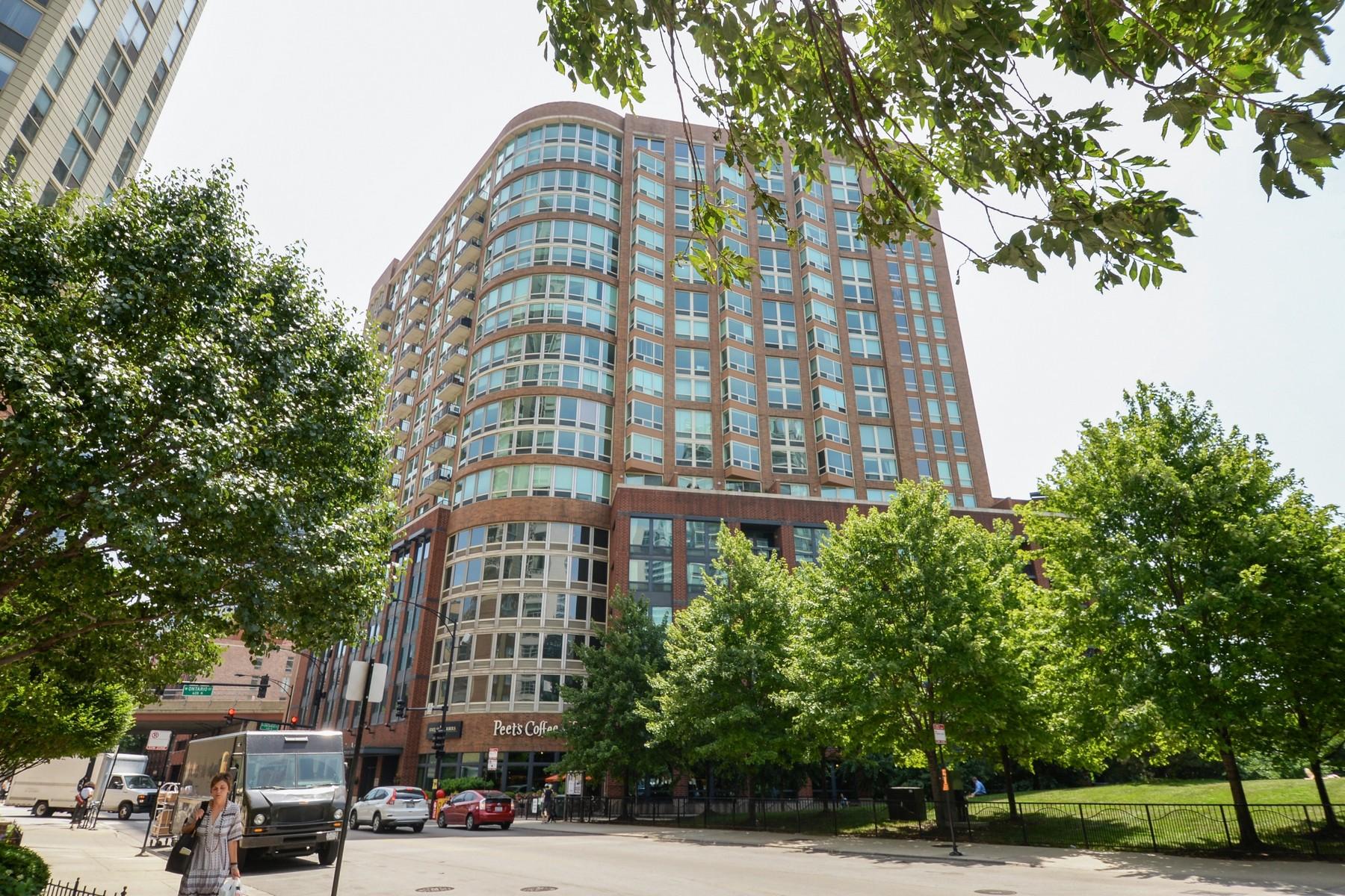Кондоминиум для того Продажа на Park Place! 600 N Kinsgbury Street Unit 1003 Chicago, Иллинойс 60654 Соединенные Штаты