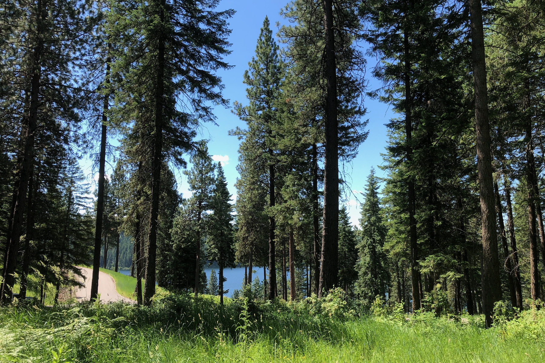 Land for Active at Beautiful Lake Views on Secondary Lot Lot 18 Cordillera Worley, Idaho 83876 United States