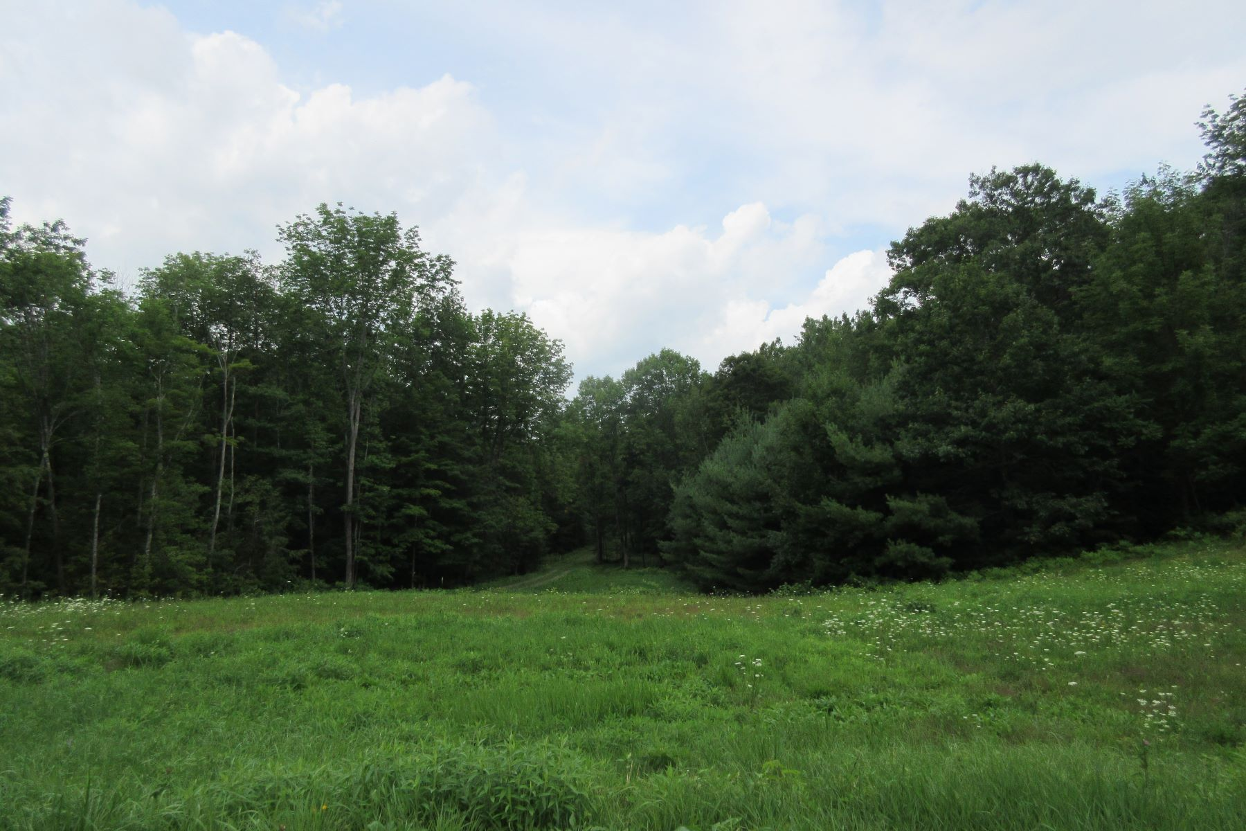 Land for Sale at Center Of Town Road, Plainfield Center Of Town Rd Plainfield, New Hampshire 03781 United States