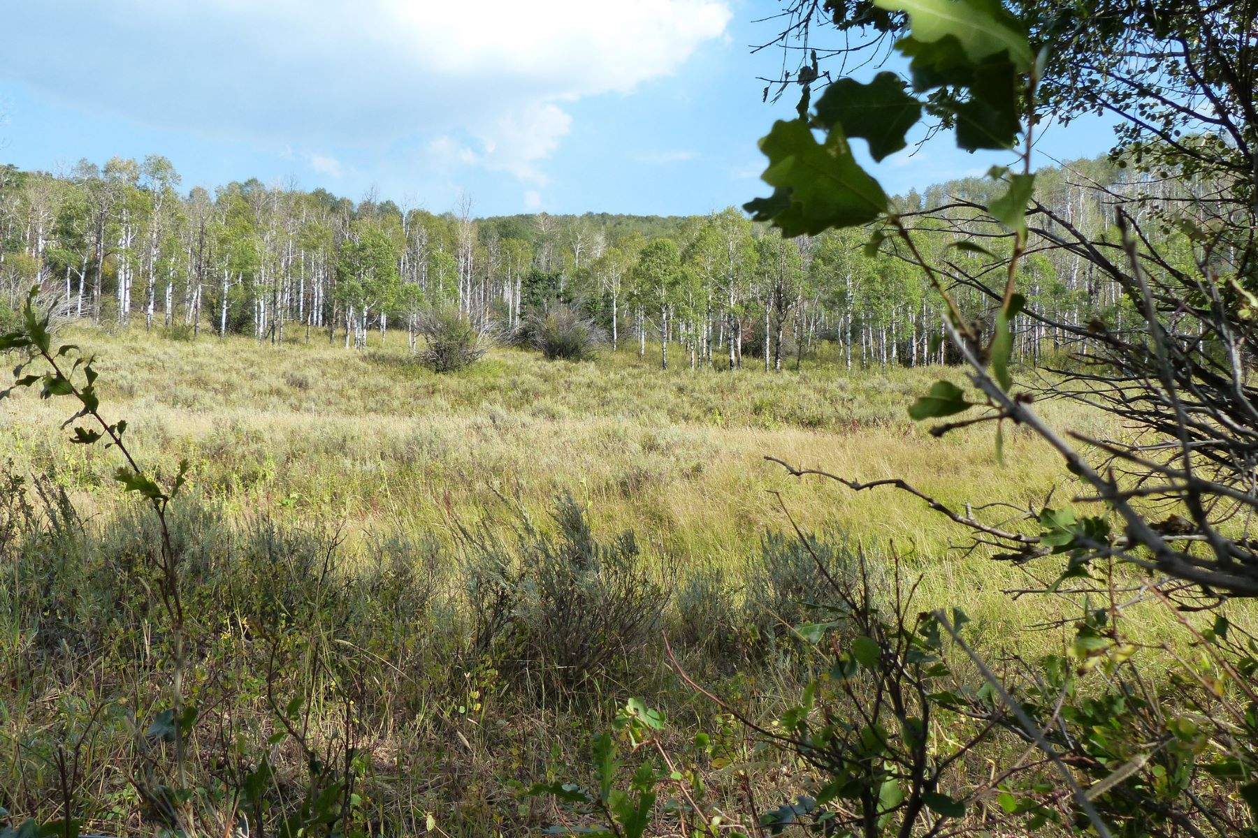 Additional photo for property listing at Quaker Mountain Lot-22 52325 Quaker Mountain Circle, Hayden, コロラド 81639 アメリカ