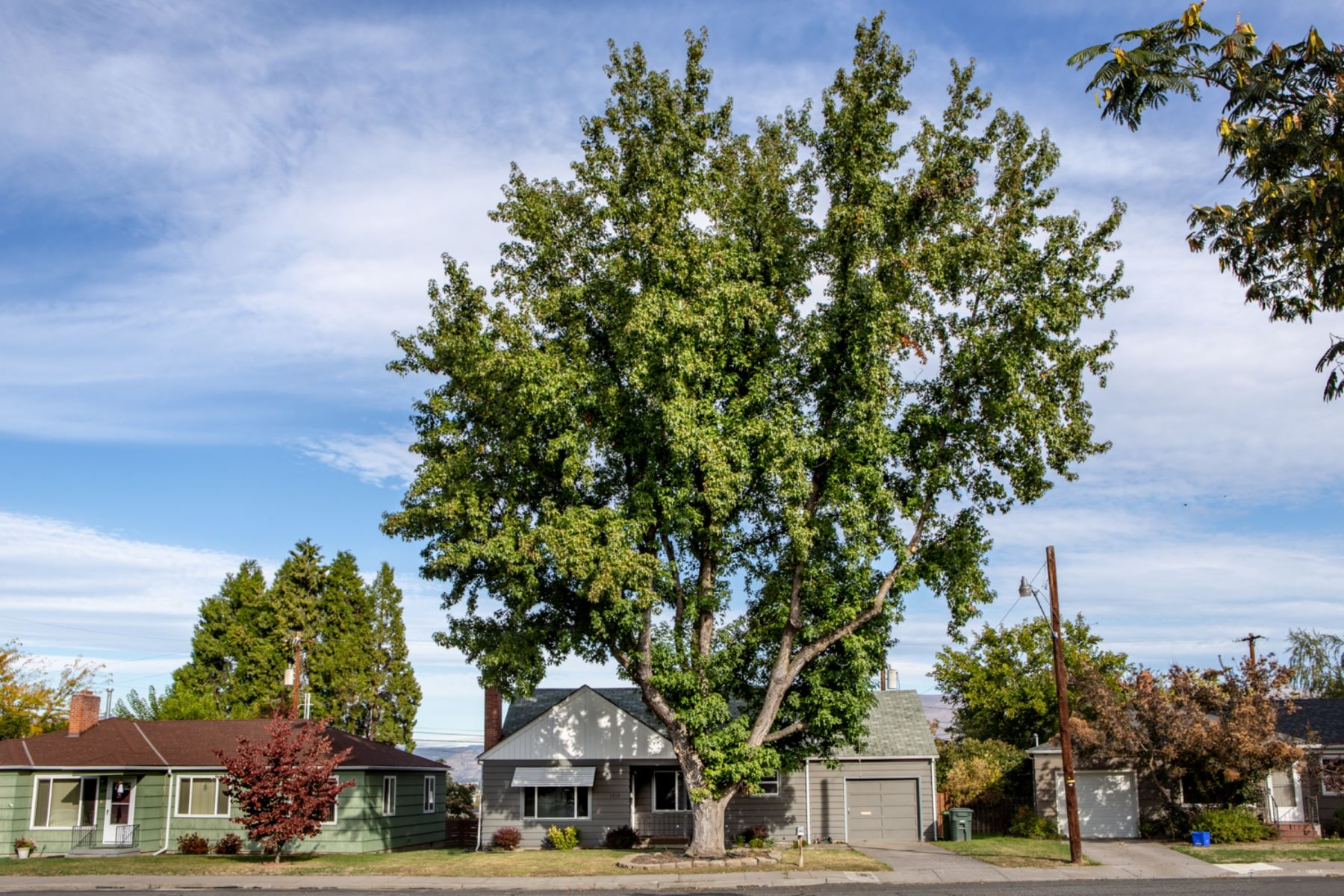 Single Family Homes for Active at 1713 E 13th The Dalles, Oregon 97058 United States