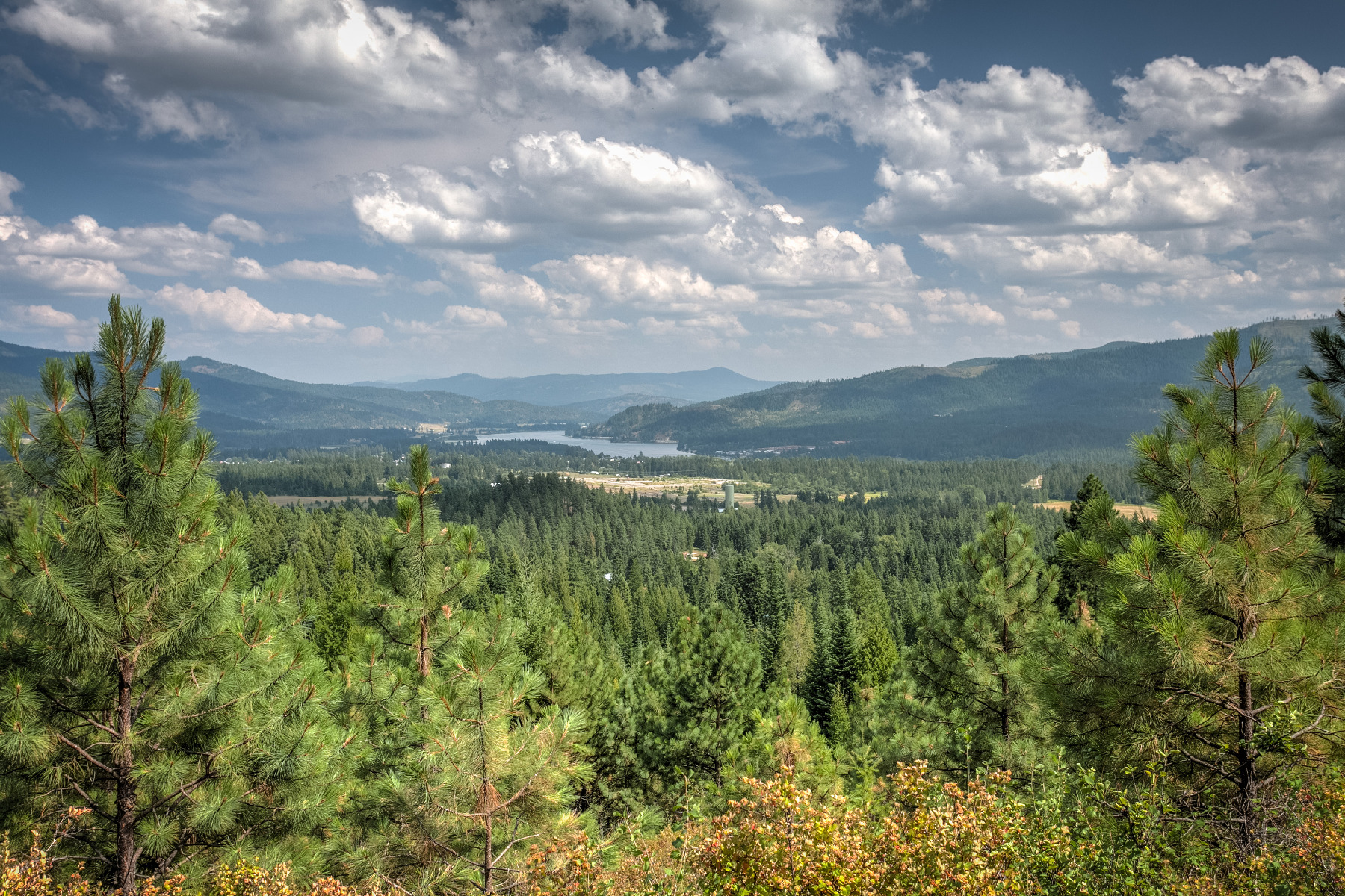 Land for Sale at RIDGEVIEW ESTATE 3907 US Highway 2, Priest River, Idaho, 83856 United States