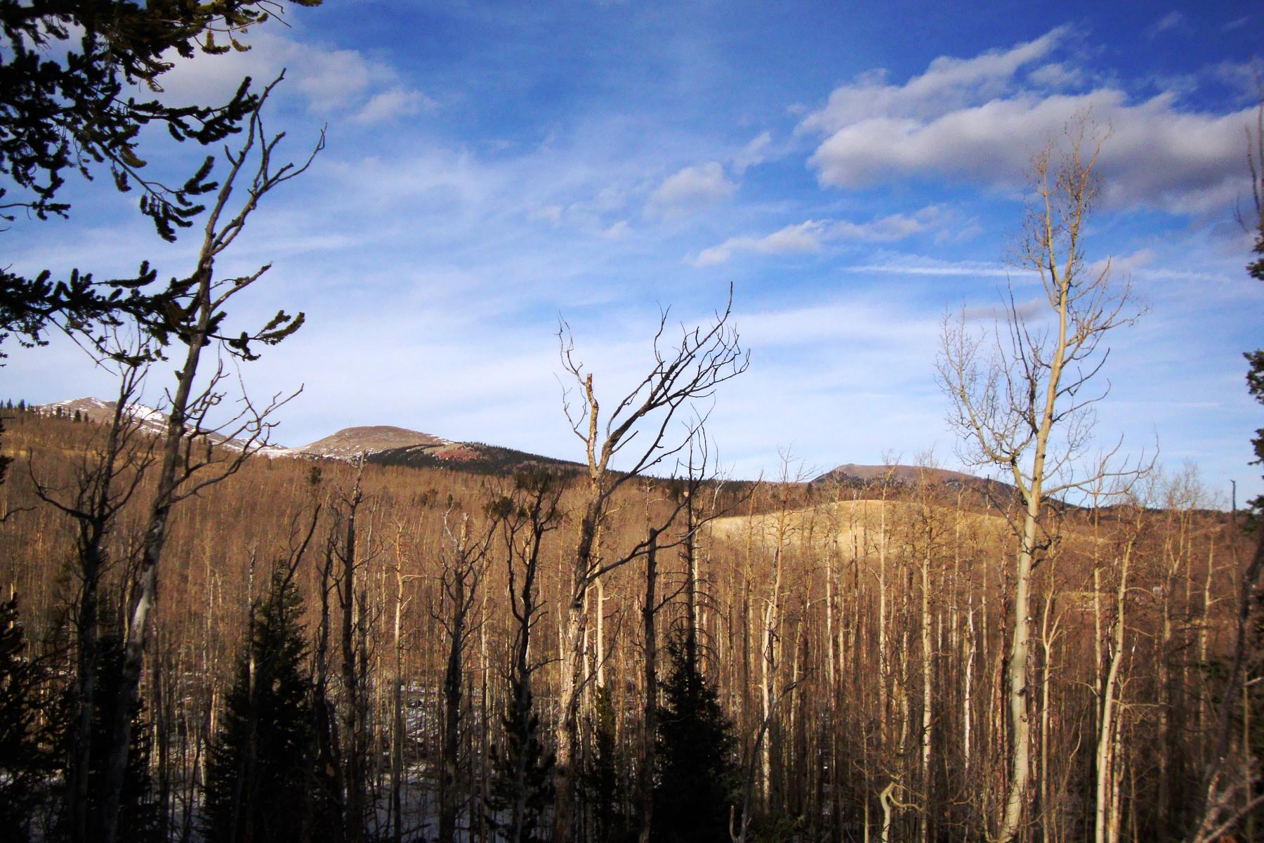 Land for Active at Silverheels Ranch Lot 19 Crossbuck Way Fairplay, Colorado 80440 United States
