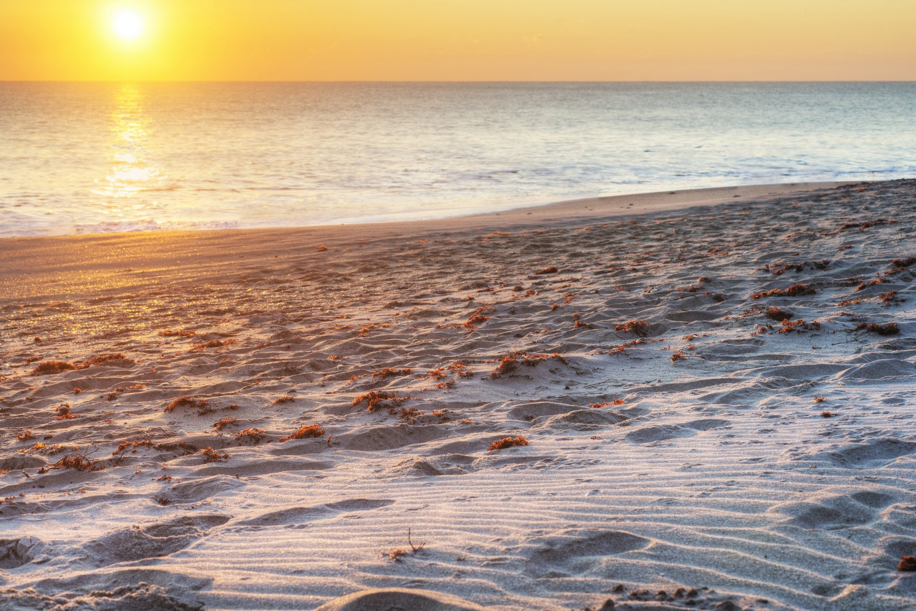 Additional photo for property listing at Best Buy on the Beach Side! 2700 N Highway A1A Unit 6-203 Indialantic, Florida 32903 United States