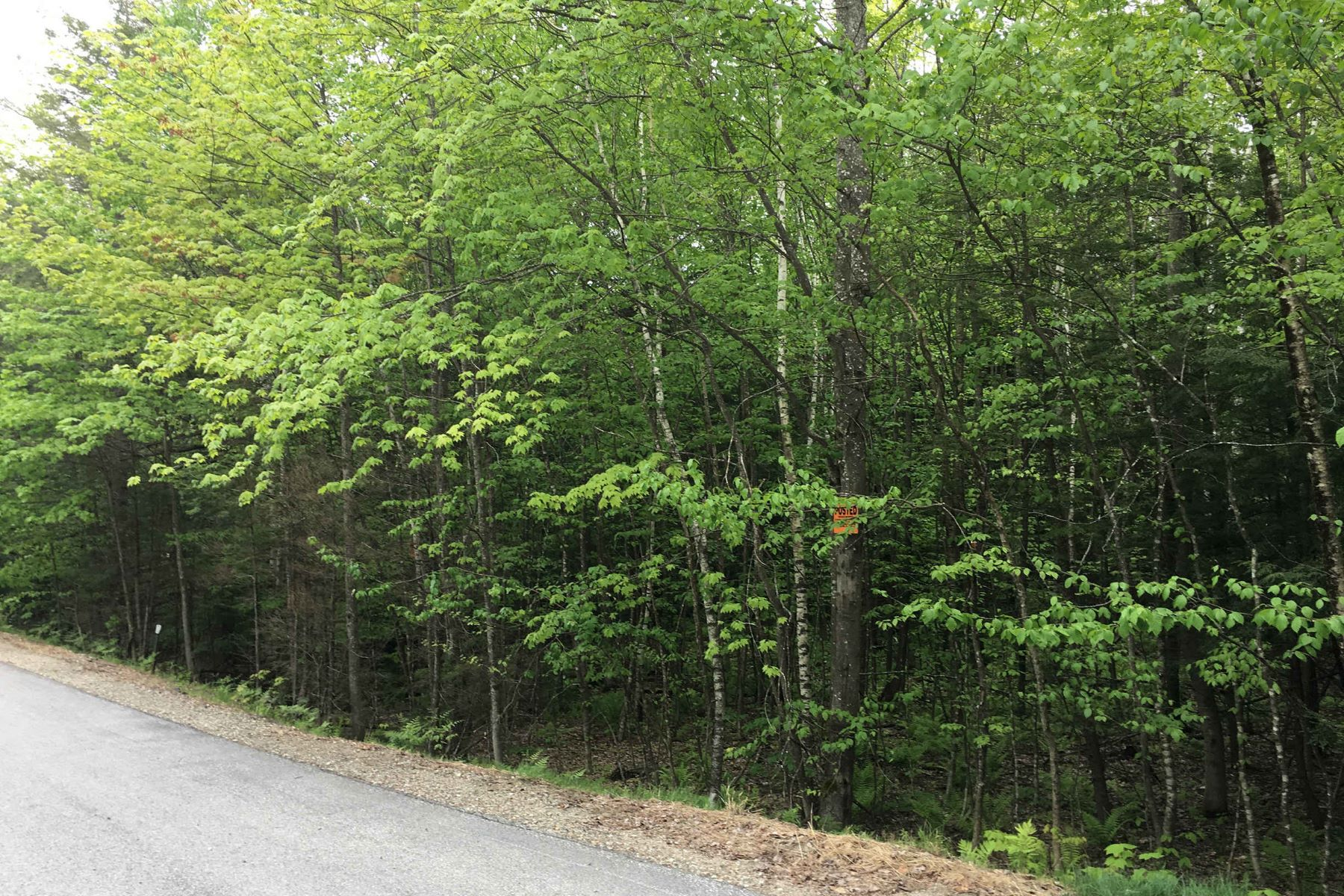 Terrain pour l Vente à 4.5 Acres Near Lake Winnipesaukee, Shops, Restaurants TBD Ragged Mountain Road New Durham, New Hampshire 03855 États-Unis