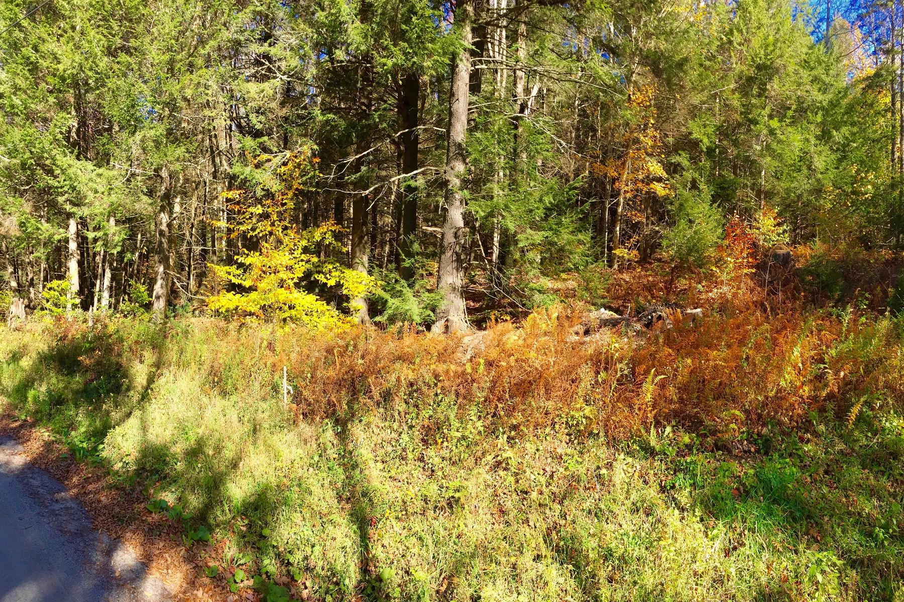 Terreno por un Venta en Affordable Lot 10 East Barnard Road, Barnard, Vermont, 05031 Estados Unidos