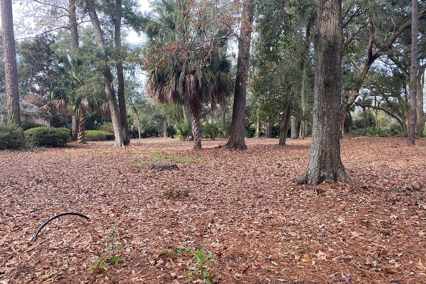 Land for Sale at 9 Millwright Drive Hilton Head Island, South Carolina 29910 United States