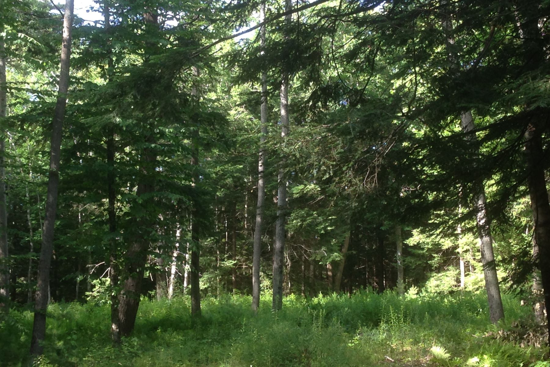 Land for Sale at 0 Carriage Lane 0 Carriage Lane Yarmouth, Maine 04096 United States