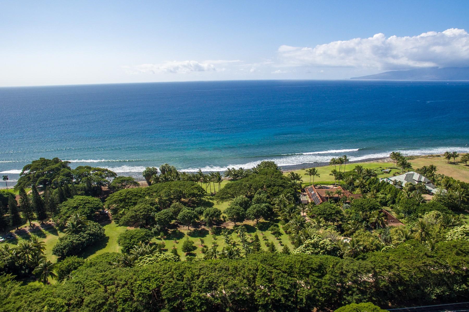 Farm / Ranch / Plantation for Active at Rare Oceanfront Property - Olowalu, Maui Hawaii 45 Kuahulu Pl Olowalu, Hawaii 96761 United States