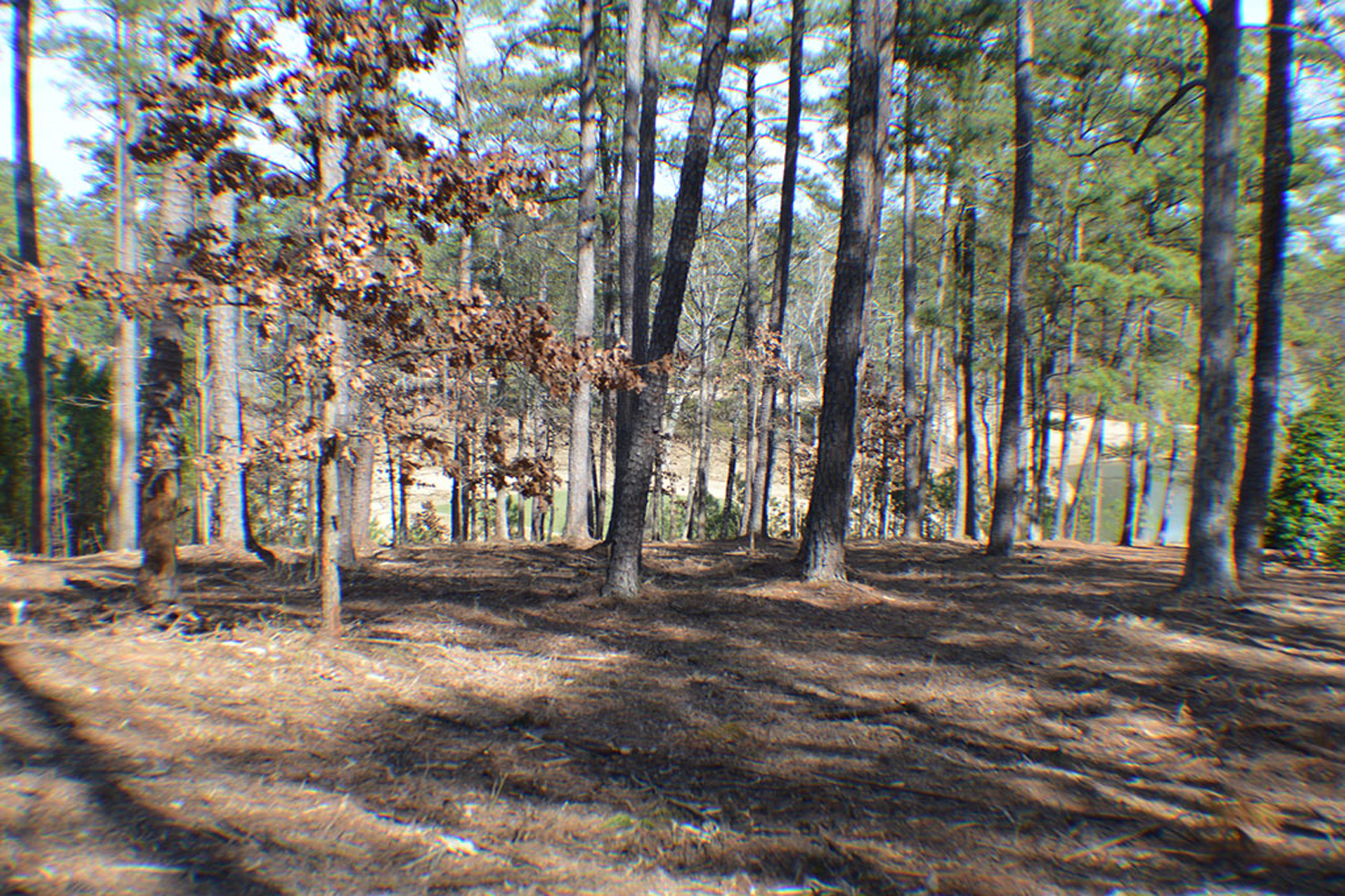 Land for Sale at Beautiful Pond/Golf Lot 1061 Henrys Hill Greensboro, Georgia 30642 United States