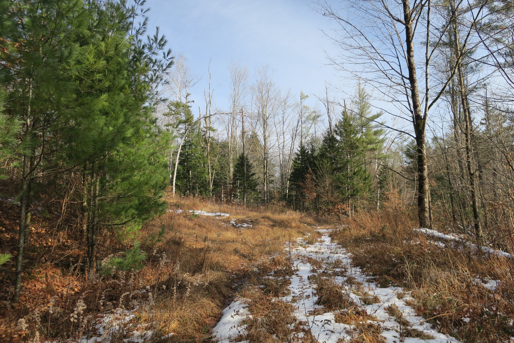 Land for Sale at Vermont Route 30 Route Jamaica, Vermont 05343 United States