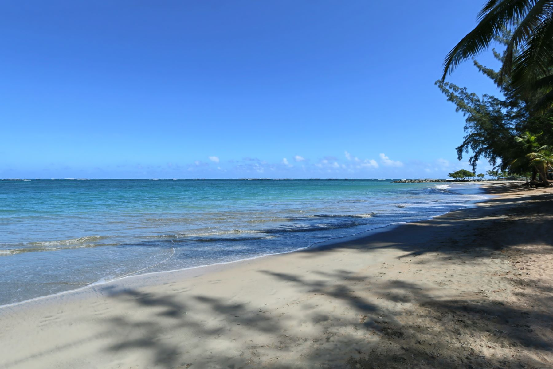 Additional photo for property listing at Beachfront Land at Sardinera, Dorado 52 Sardinera Beach Dorado Beach, Puerto Rico 00646 Porto Rico