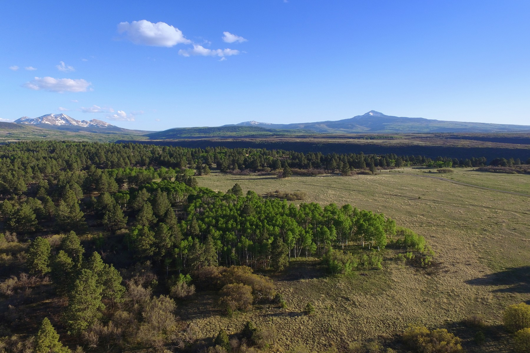 Land for Active at TBD Peninsula Drive 27 & 28 TBD Peninsula Drive 27 & 28 Placerville, Colorado 81435 United States