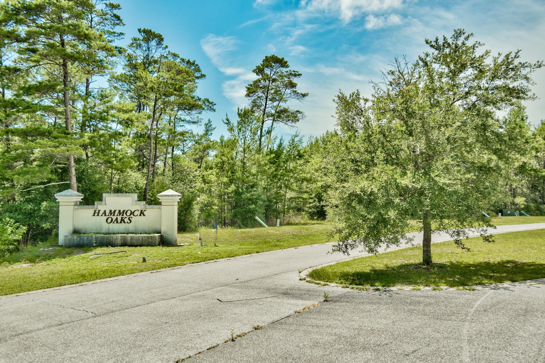 토지 용 매매 에 26 LOT DEVELOPMENT OPPORTUNITY FOR INVESTORS IN FREEPORT Hammock Oaks Blvd Freeport, 플로리다, 32439 미국