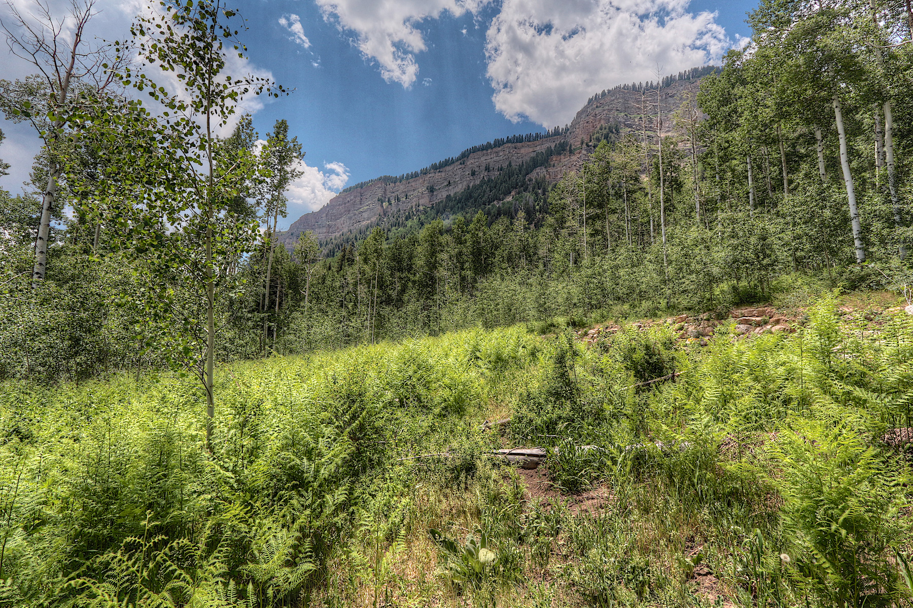 Additional photo for property listing at 204 Wilshire Drive 204 Wilshire Drive Durango, Colorado 81301 United States
