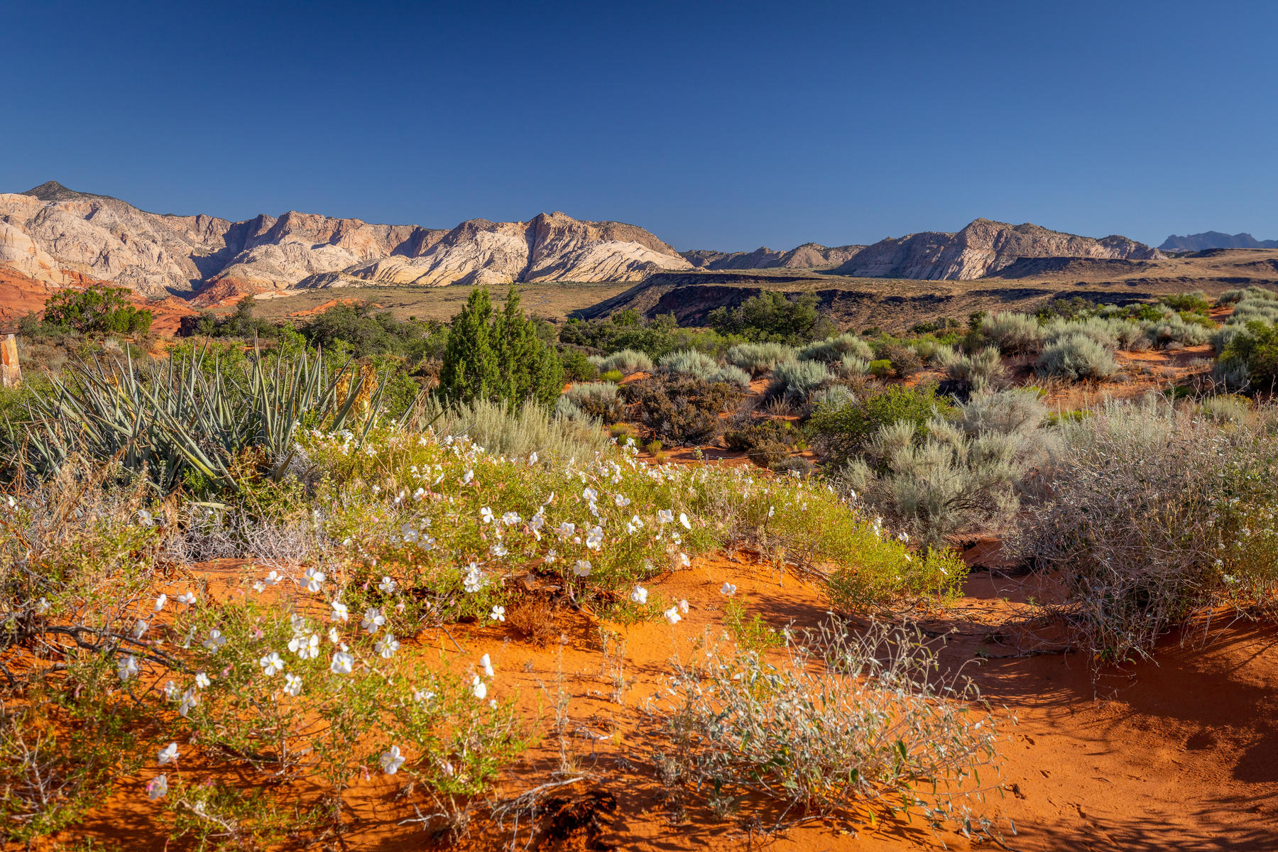 Land for Active at Breath Taking Long Sky Dr Lot 509 St. George, Utah 84770 United States