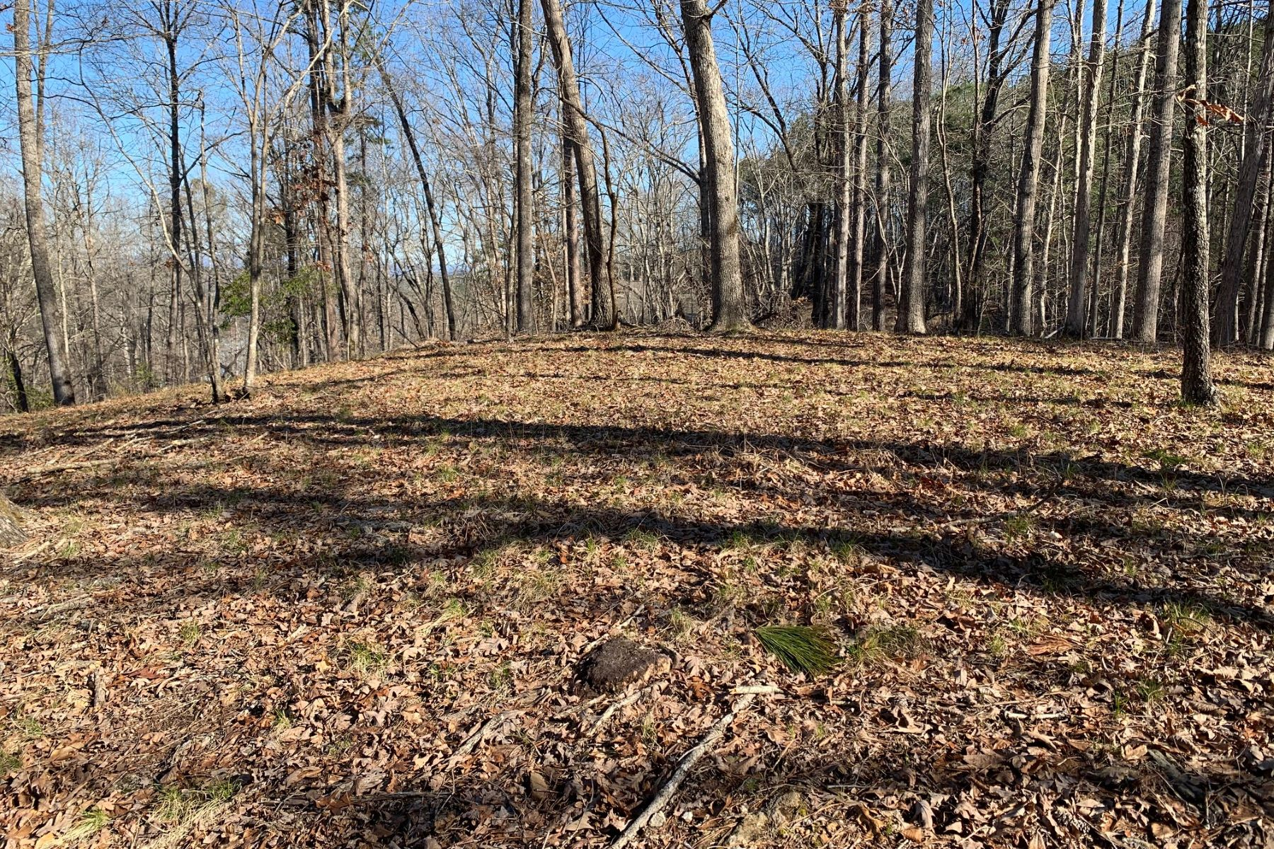 Land for Active at Acreage Opportunity! CKS 1-12 + 1-13 Six Mile, South Carolina 29682 United States