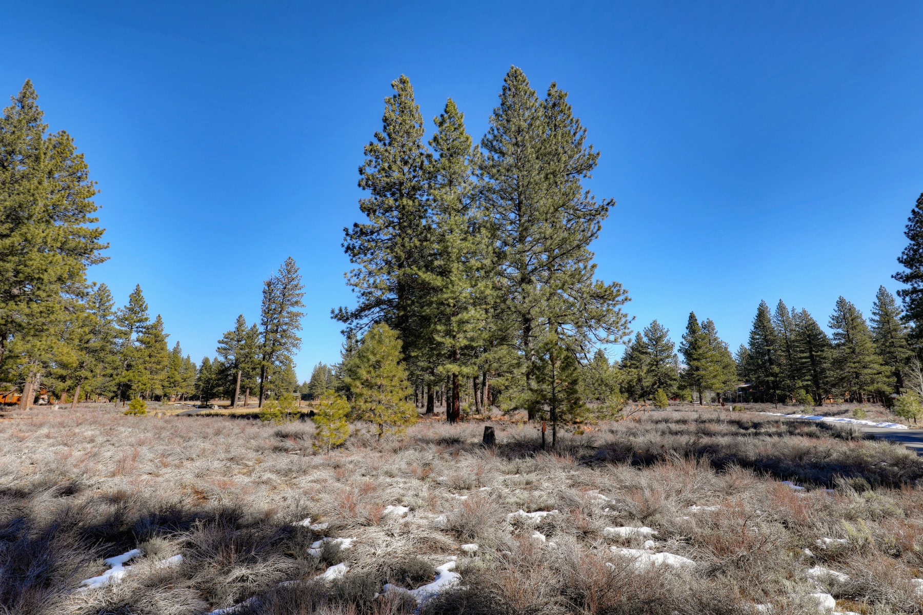 Additional photo for property listing at 12360 Caleb Drive, Truckee CA 96161 12360 Caleb Drive Truckee, California 96161 United States