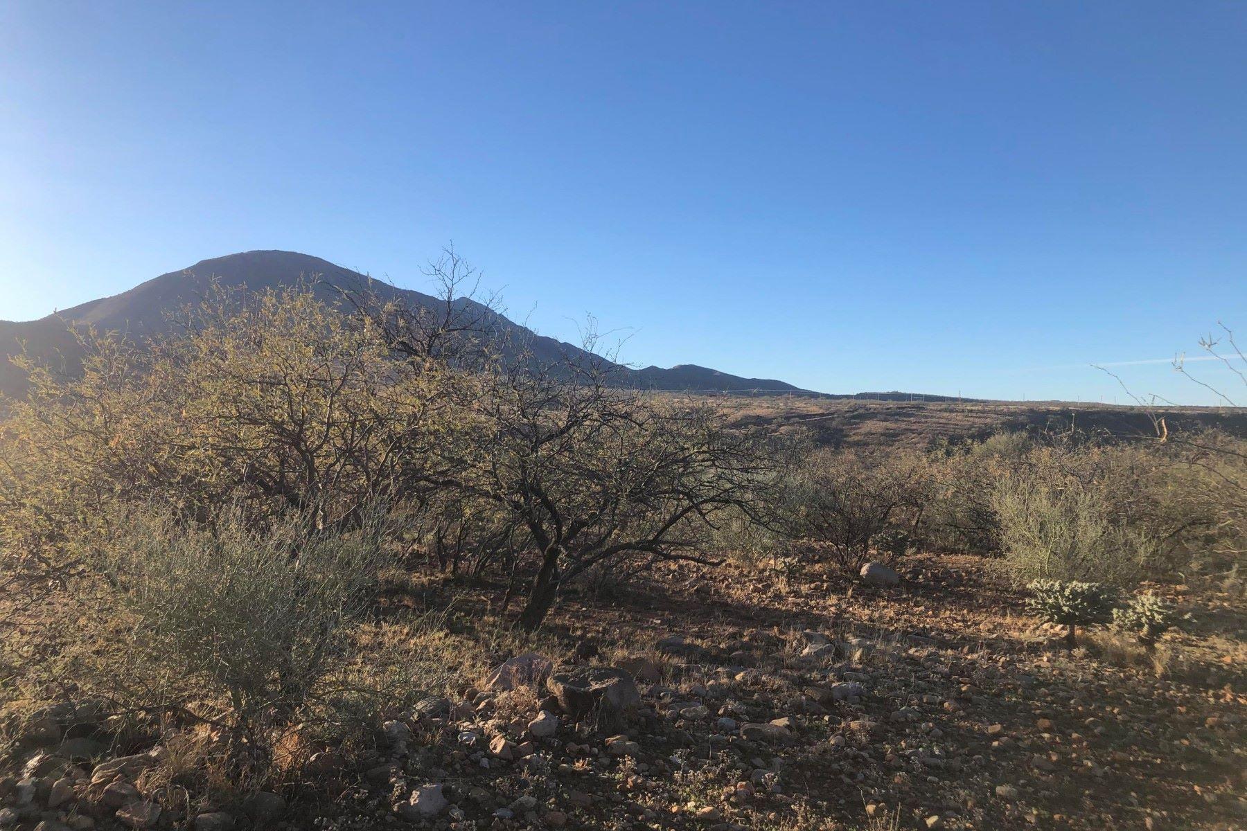 Land for Active at Tubac Foothills Ranch 356 Camino Armadillo 164 Tubac, Arizona 85646 United States