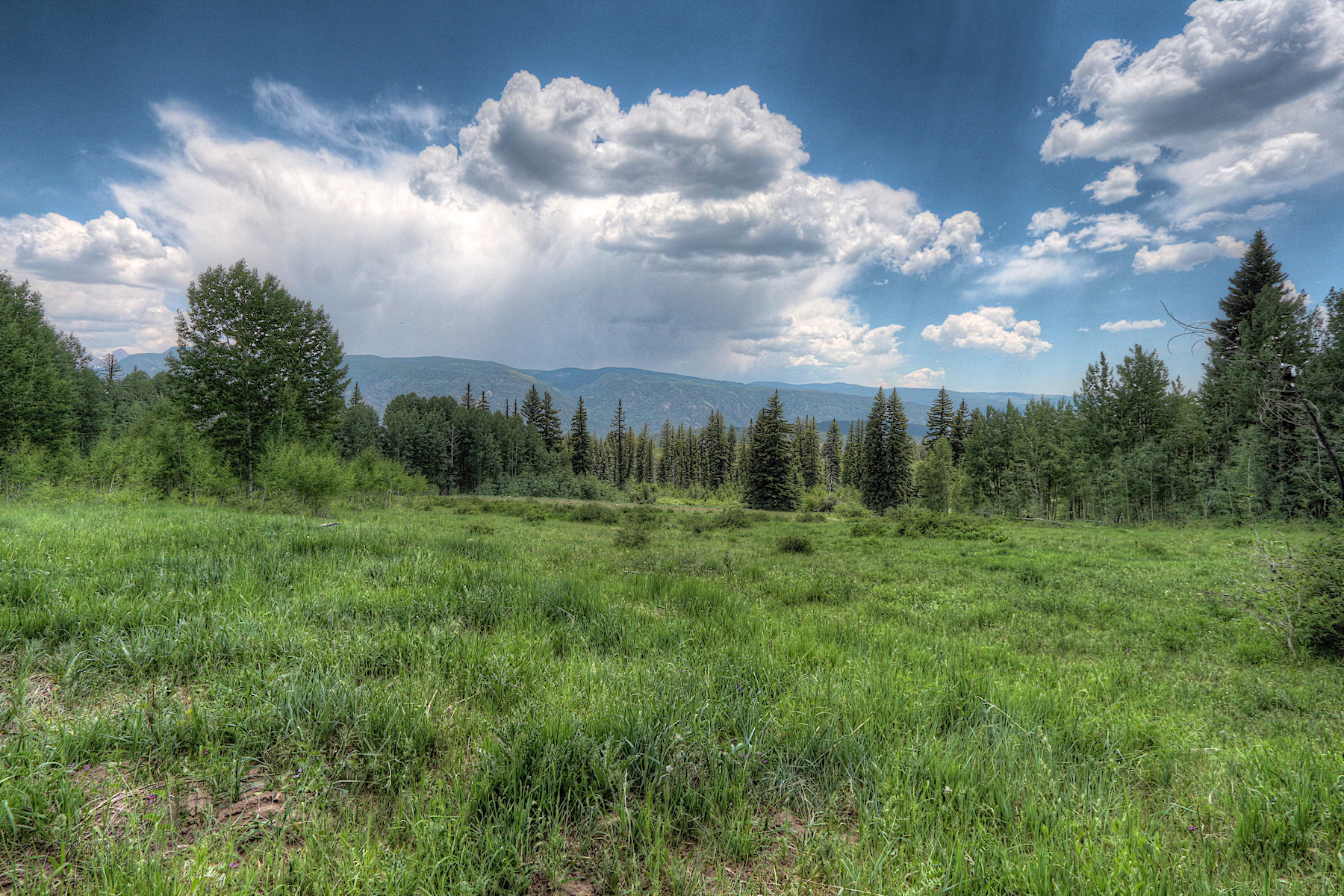 Land for Sale at TBD Wilshire Drive TBD Wilshire Drive Durango, Colorado 81301 United States