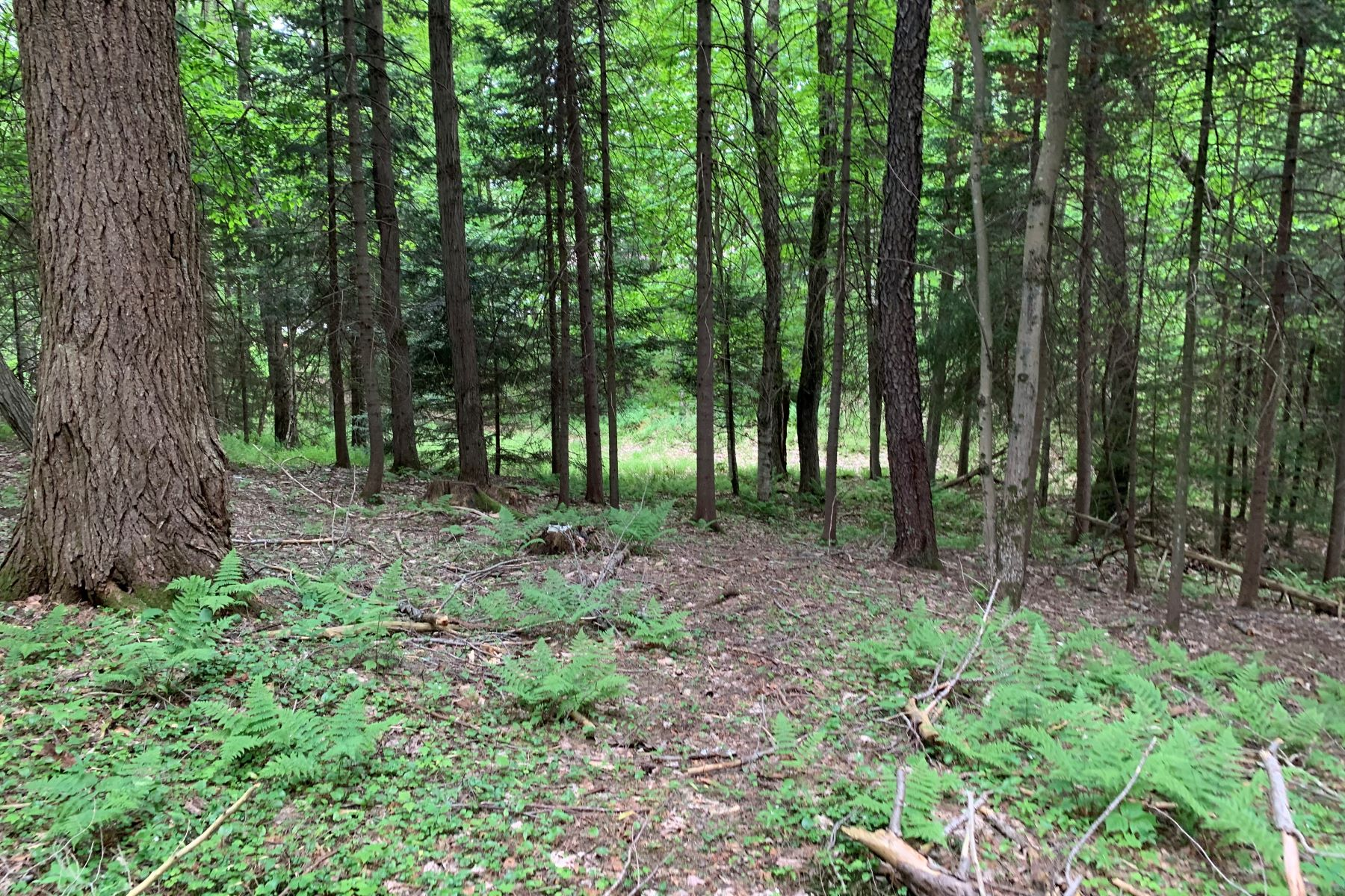 Land for Active at Moose River building lot 287 Pine Street Thendara, New York 13472 United States