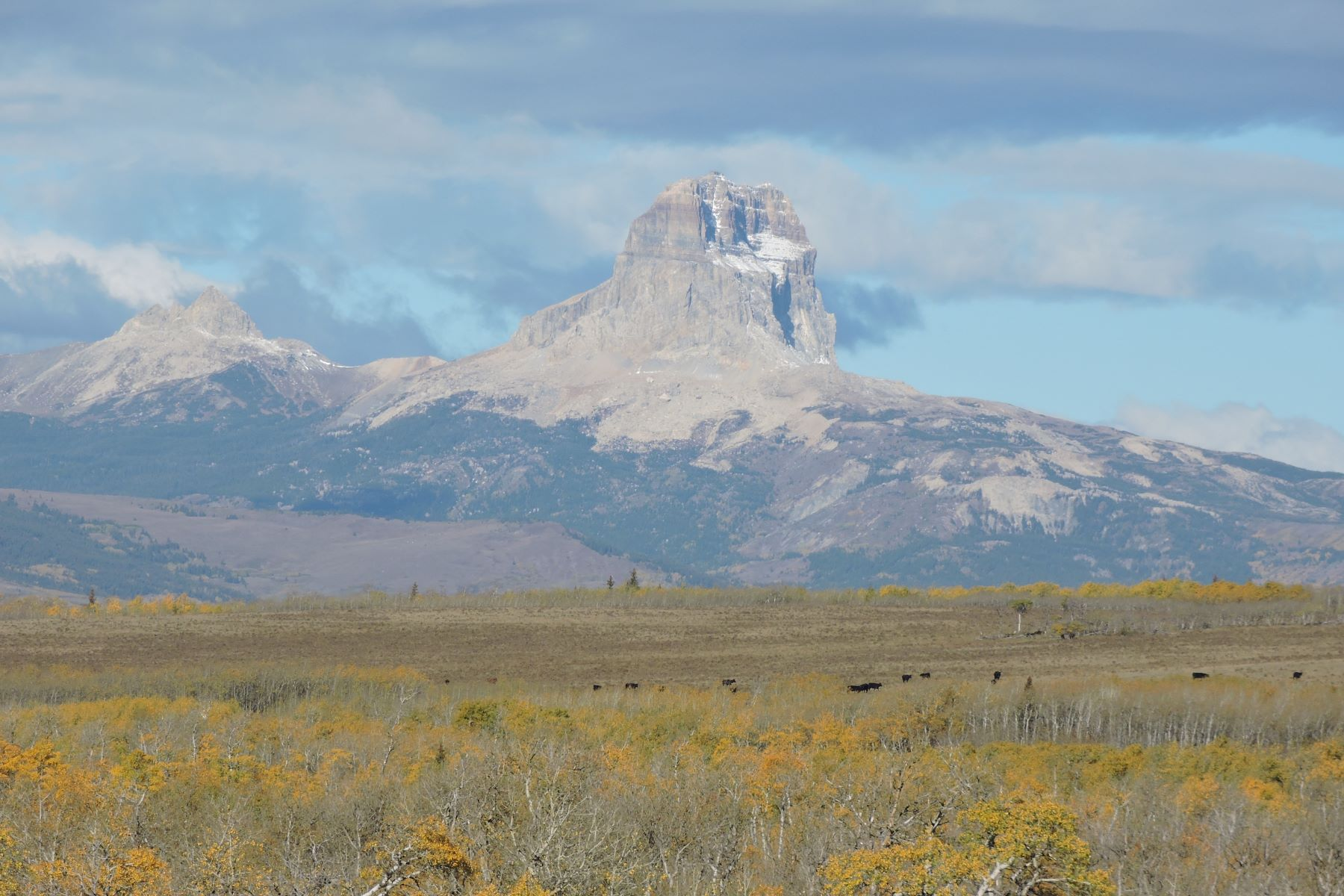 Terreno por un Venta en Siyeh Ranch - Eastside of Glacier National Park Siyeh Ranch- Duck Lake Road Babb, Montana 59411 Estados Unidos
