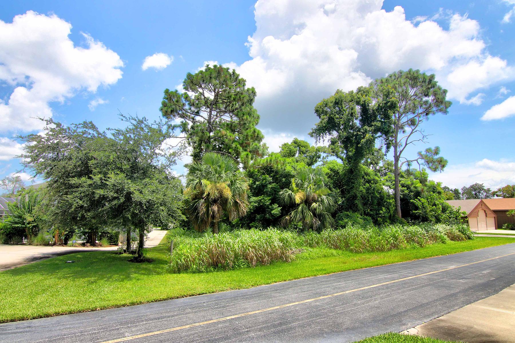 Земля для того Продажа на 2541 Cross Country Dr , Port Orange, FL 32128 2541 Cross Country Dr Port Orange, Флорида 32128 Соединенные Штаты