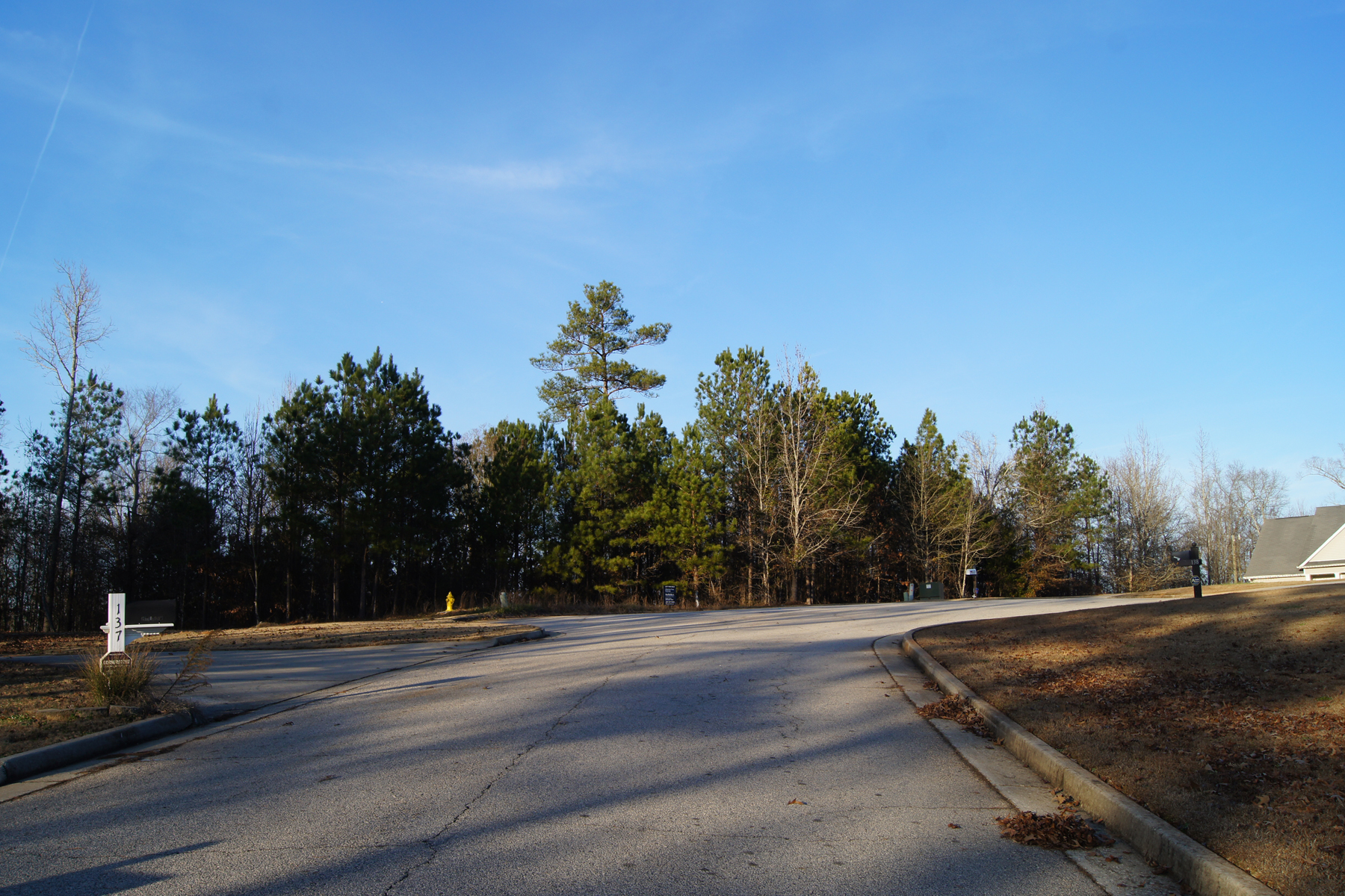 Land for Sale at Cul-de-sac Lot In Developed Nottingham Estates 139 King Richard Drive Griffin, Georgia 30223 United States