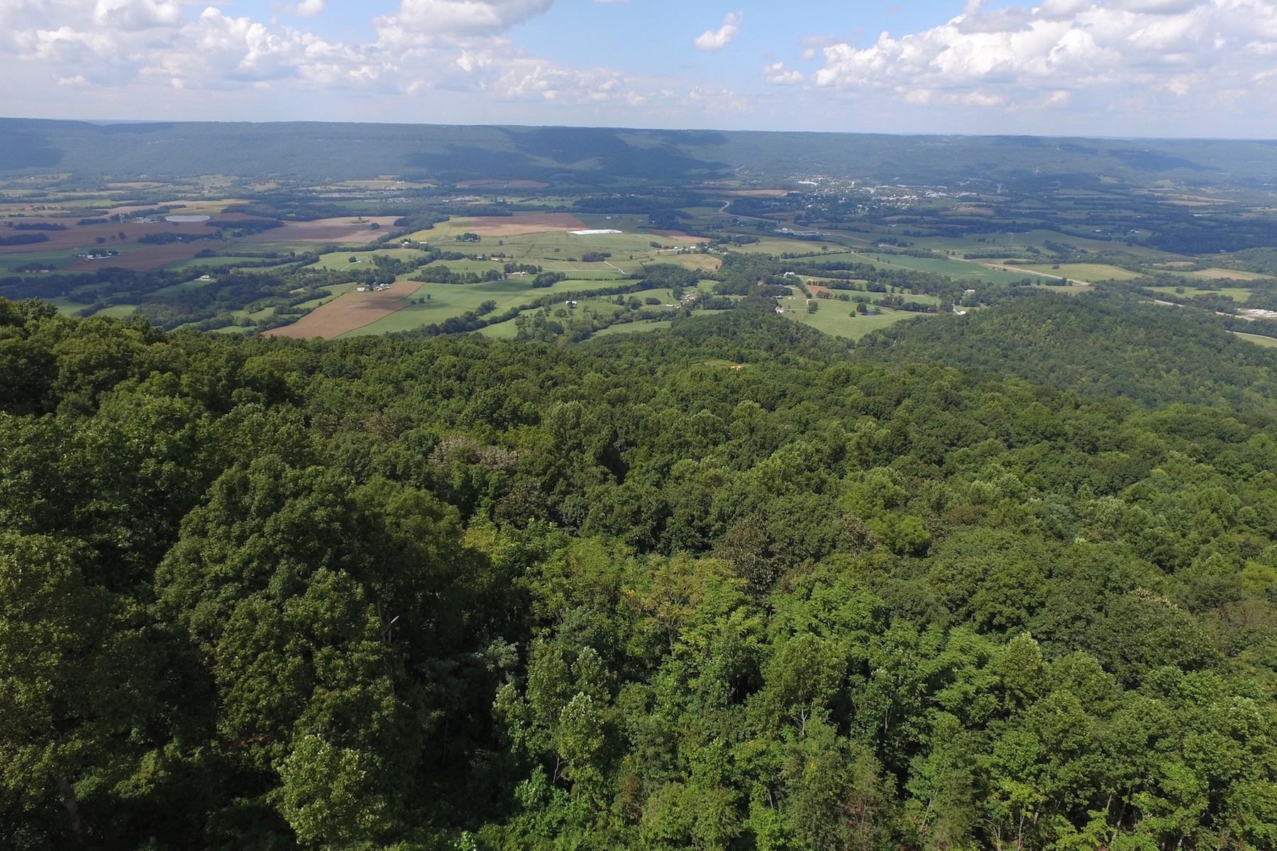 Terrain pour l Vente à Dayton Mountain/Walden Ridge Brow Frontage Rigsby Gap Road, Pikeville, Tennessee 37367 États-Unis