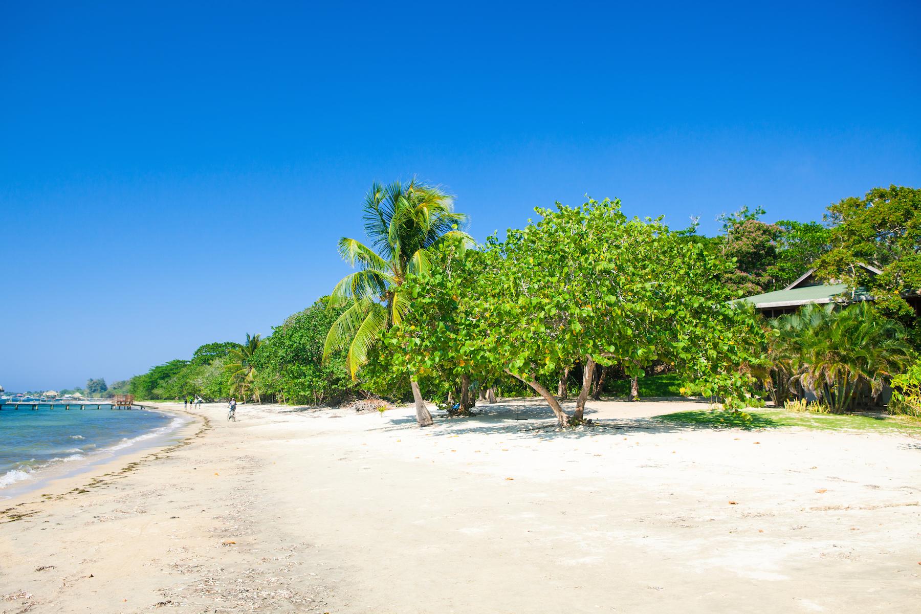 Land for Sale at West Bay land development West Bay, Roatan, Bay Islands Honduras