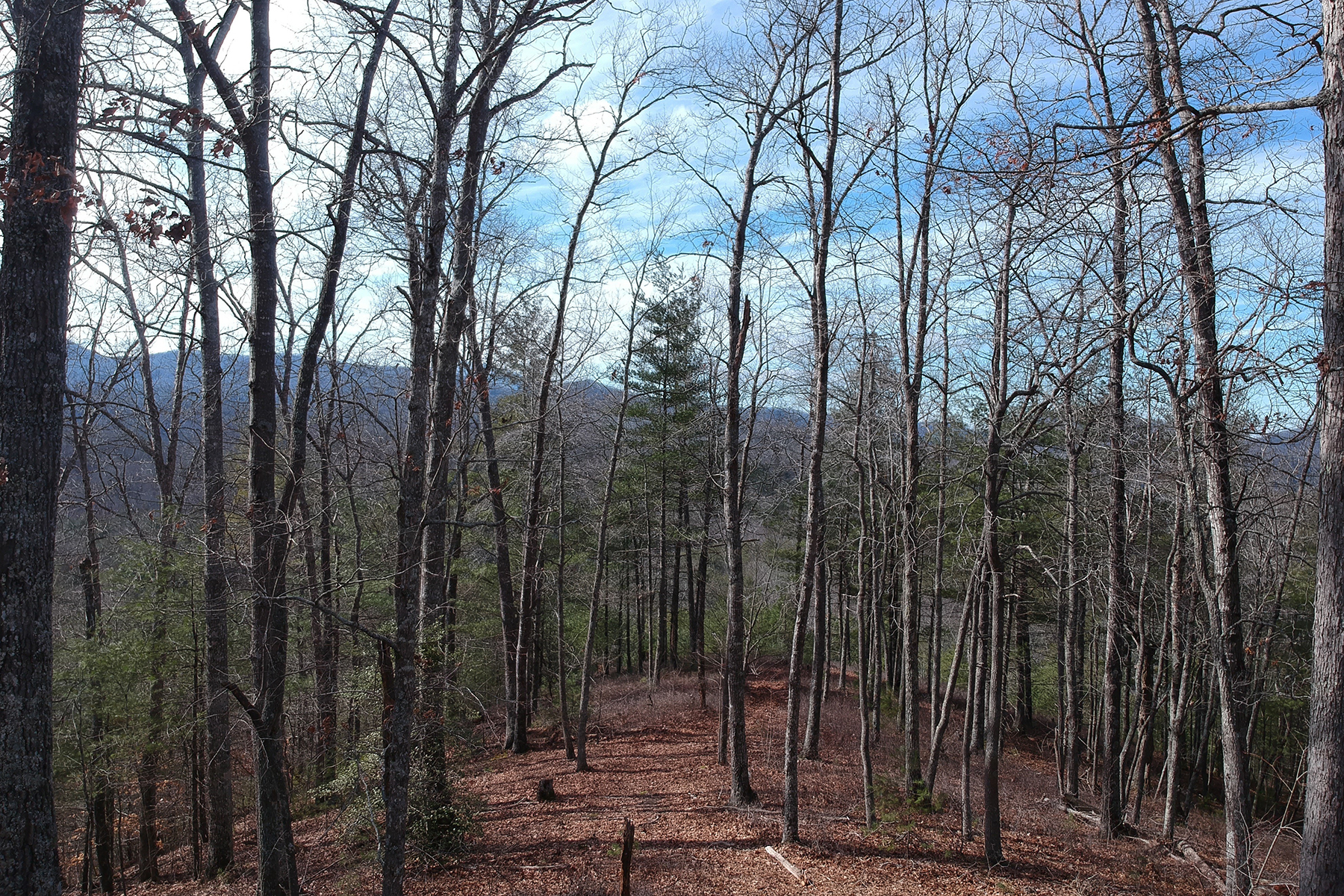 Land for Active at FRENCH BROAD CROSSING 60 Longview Court , 3 Trailside Marshall, North Carolina 28753 United States