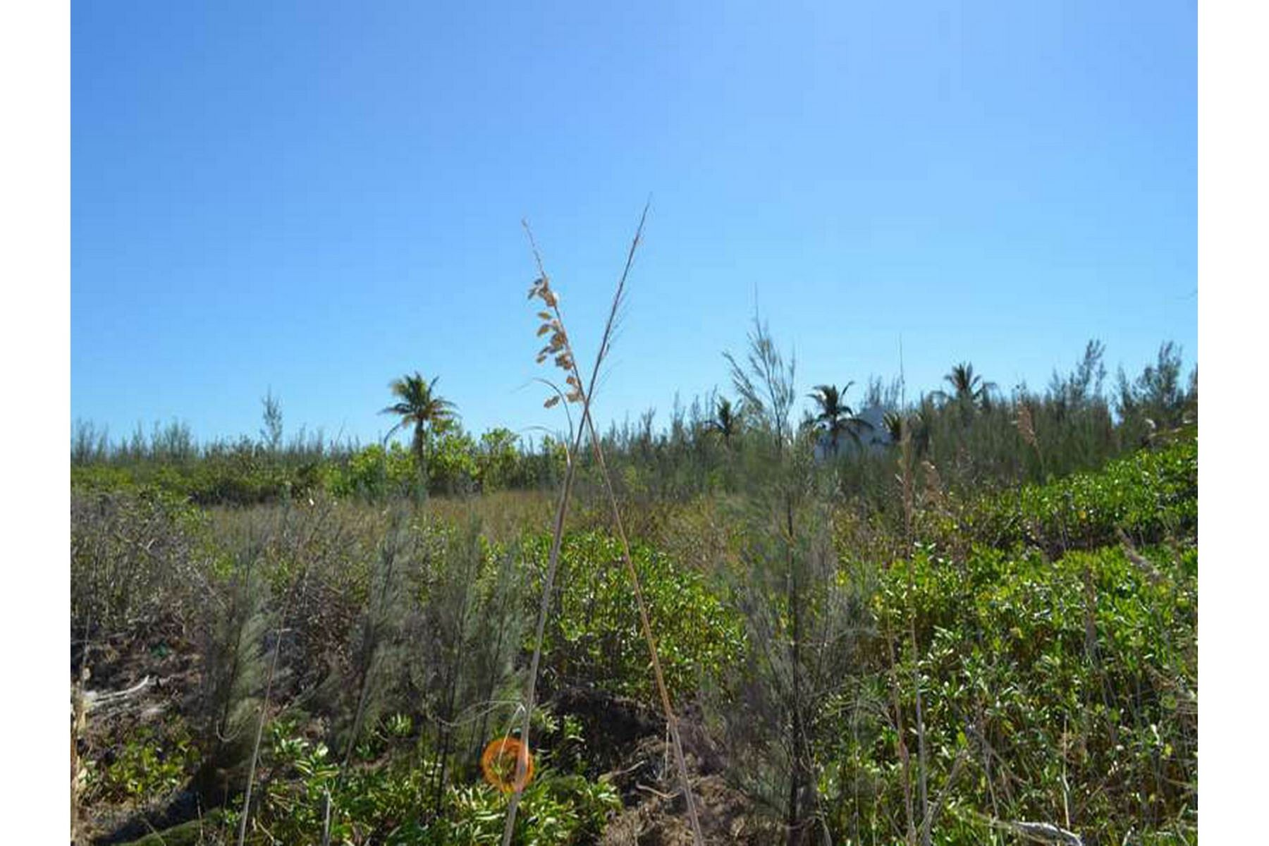 Additional photo for property listing at Banyan Beach Lot Treasure Cay, Abaco Bahamas